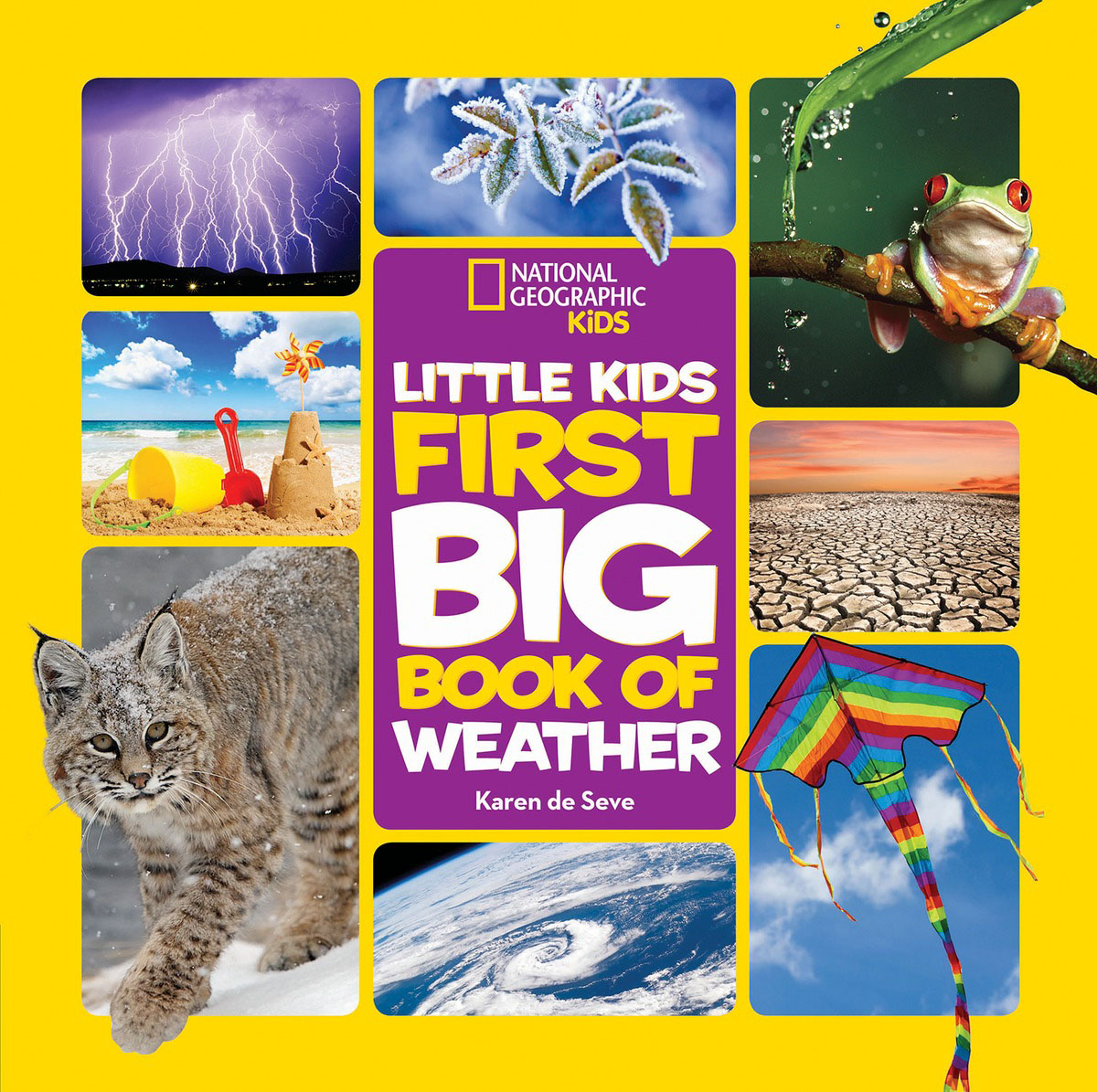National Geographic Little Kids First Big Book of Weather adidas x pharrell little kids superstar supercolor
