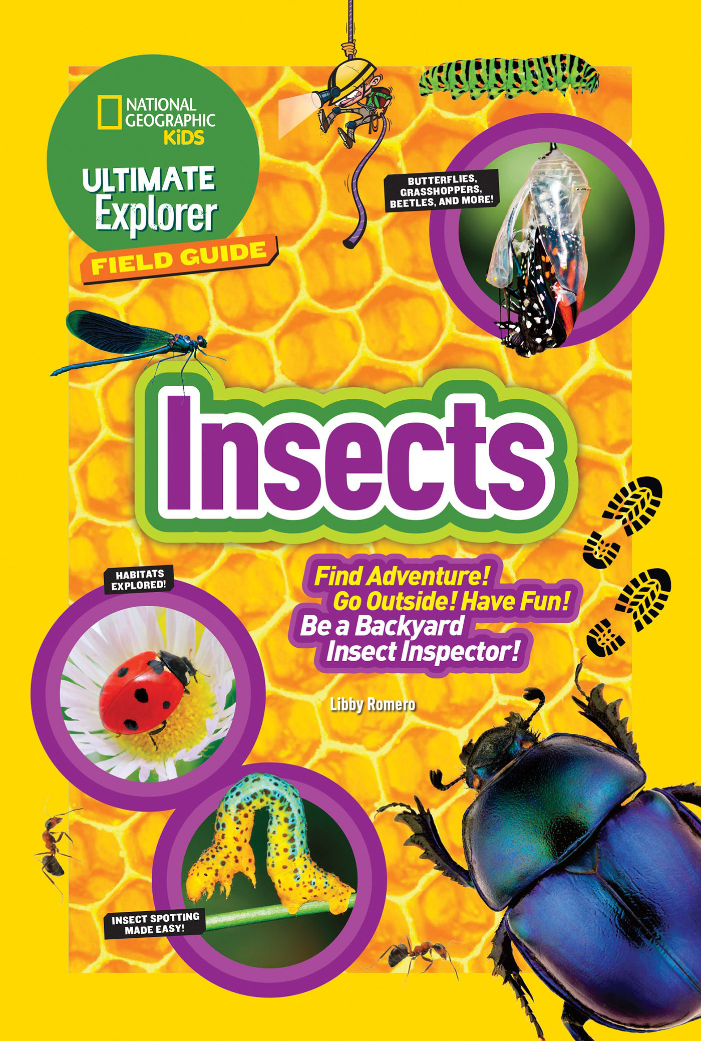 Ultimate Explorer Field Guide: Insects maine – an explorer s guide 7e