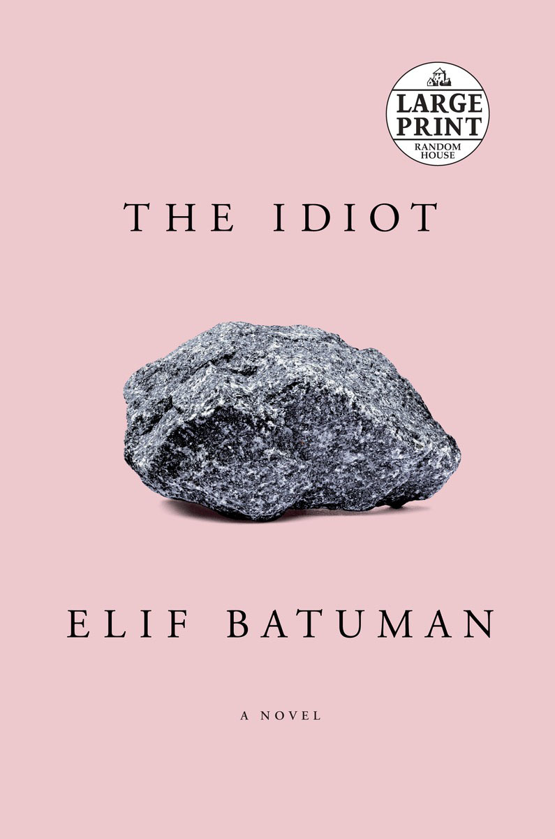 The Idiot like a virgin secrets they won t teach you at business school