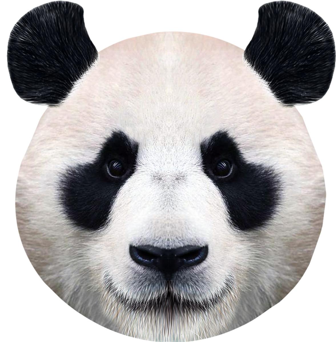 Подушка декоративная GiftnHome Панда, 35 х 37 смPLW- FACE PandaПодушка декоративная GiftnHome Панда прекрасно дополнит интерьер спальни или гостиной. Чехол подушки выполнен из атласа (искусственный шелк) и оформлен изысканным орнаментом. В качестве наполнителя используется мягкий холлофайбер. Чехол снабжен потайной застежкой-молнией, благодаря чему его легко можно снять и постирать. Красивая подушка создаст атмосферу уюта в доме и станет прекрасным элементом декора.