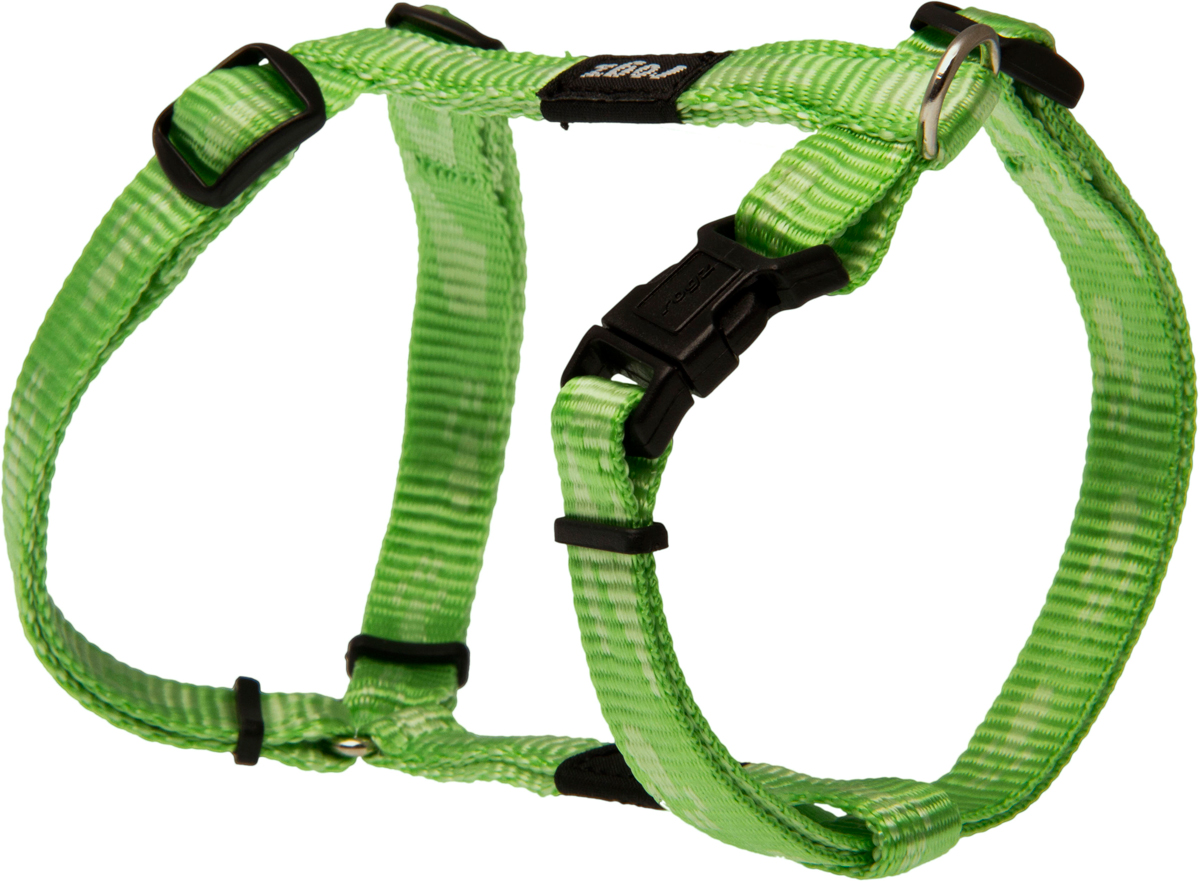 Шлейка для собак Rogz Alpinist, цвет: зеленый, ширина 1,1 см. Размер SSJ21GОсобо мягкая, но очень прочная шлейка для собак Rogz Alpinist обеспечит безопасность на прогулке даже самым активным собакам.Все соединения деталей имеют специальную дополнительную строчку для большей прочности.Специальная конструкция пряжки Rog Loc - очень крепкая (система Fort Knox). Замок может быть расстегнут только рукой человека. Технология распределения нагрузки позволяет снизить нагрузку на пряжки, изготовленные из титанового пластика, с помощью правильного и разумного расположения грузовых колец, благодаря чему, даже при самых сильных рывках, изделие не рвется и не деформируется.Выполненные специально по заказу Rogz литые кольца гальванически хромированы, что позволяет избежать коррозии и потускнения изделия.