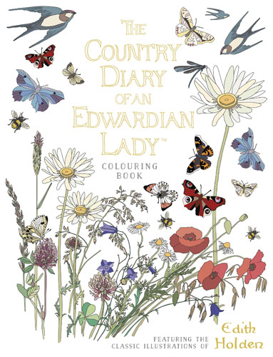 The Country Diary of an Edwardian Lady Colouring Book santa sticker and colouring book