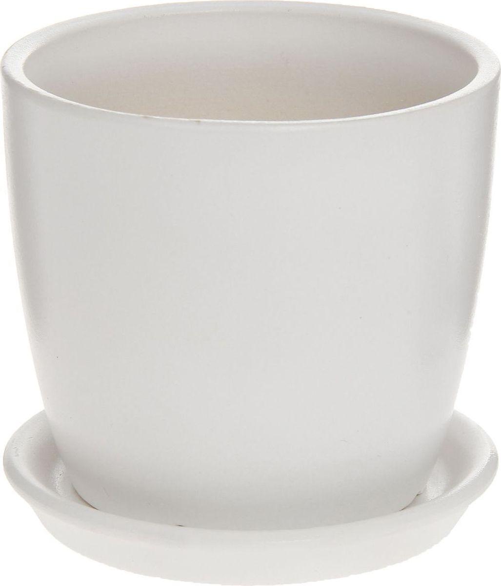 Кашпо Керамика ручной работы Осень. Глянец, цвет: белый, 0,5 л1170264Комнатные растения - всеобщие любимцы. Они радуют глаз, насыщают помещение кислородом и украшают пространство. Каждому из них необходим свой удобный и красивый дом.Кашпо из керамики Осень. Глянец прекрасно подходит для высадки растений: за счёт пластичности глины и разных способов обработки существует великое множество форм и дизайнов; пористый материал позволяет испаряться лишней влаге; воздух, необходимый для дыхания корней, проникает сквозь керамические стенки.Кашпо для цветов освежит интерьер и подчеркнёт его стиль.