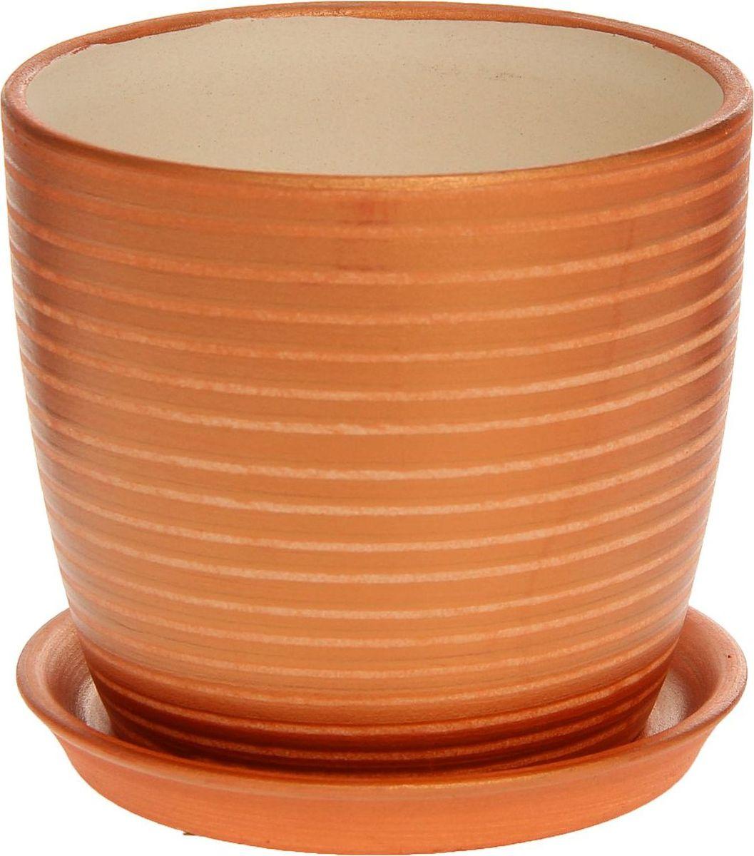 Кашпо Керамика ручной работы Осень. Радуга, цвет: бронзовый, 0,5 л1170267Комнатные растения — всеобщие любимцы. Они радуют глаз, насыщают помещение кислородом и украшают пространство. Каждому из них необходим свой удобный и красивый дом. Кашпо из керамики прекрасно подходят для высадки растений: за счёт пластичности глины и разных способов обработки существует великое множество форм и дизайновпористый материал позволяет испаряться лишней влагевоздух, необходимый для дыхания корней, проникает сквозь керамические стенки! #name# позаботится о зелёном питомце, освежит интерьер и подчеркнёт его стиль.