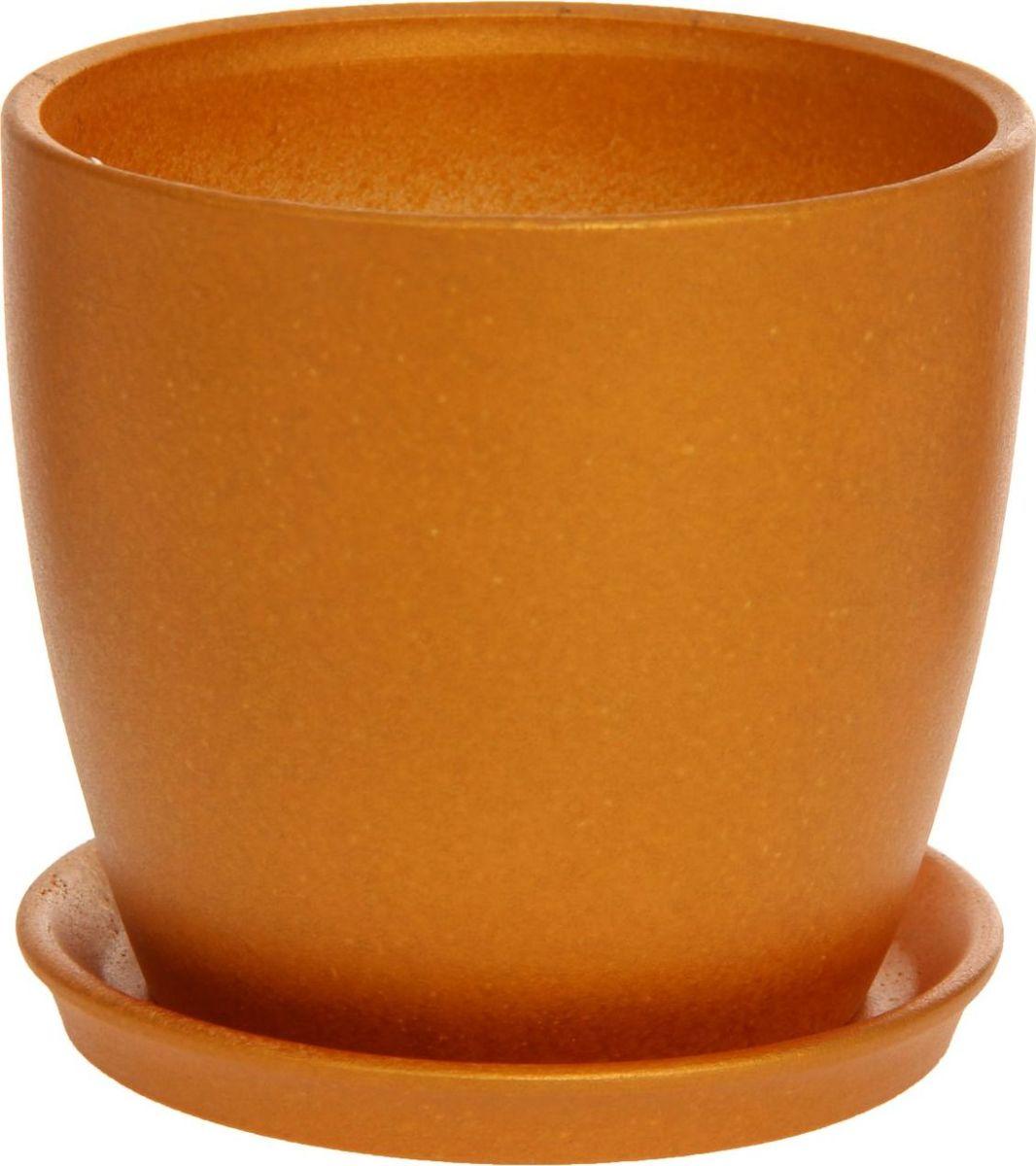 Кашпо Керамика ручной работы Осень, цвет: золотой, 1 л1170282Комнатные растения — всеобщие любимцы. Они радуют глаз, насыщают помещение кислородом и украшают пространство. Каждому из них необходим свой удобный и красивый дом. Кашпо из керамики прекрасно подходят для высадки растений: за счет пластичности глины и разных способов обработки существует великое множество форм и дизайнов пористый материал позволяет испаряться лишней влаге воздух, необходимый для дыхания корней, проникает сквозь керамические стенки! позаботится о зеленом питомце, освежит интерьер и подчеркнет его стиль.