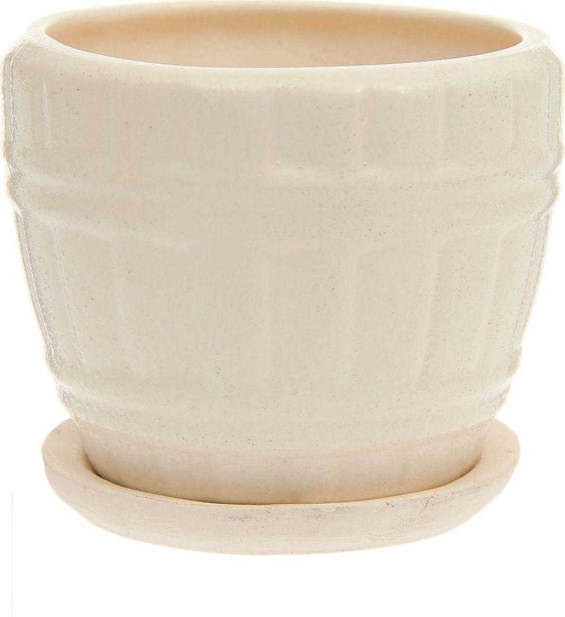 Кашпо Кадушка, цвет: белый, 0,3 л1170826Комнатные растения — всеобщие любимцы. Они радуют глаз, насыщают помещение кислородом и украшают пространство. Каждому из них необходим свой удобный и красивый дом. Кашпо из керамики прекрасно подходят для высадки растений: за счёт пластичности глины и разных способов обработки существует великое множество форм и дизайновпористый материал позволяет испаряться лишней влагевоздух, необходимый для дыхания корней, проникает сквозь керамические стенки! #name# позаботится о зелёном питомце, освежит интерьер и подчеркнёт его стиль.
