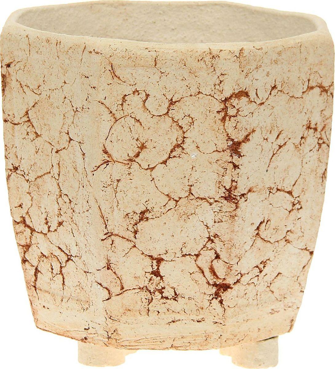 Кашпо Фаворит, 26 х 26 х 24 см1171974Комнатные растения — всеобщие любимцы. Они радуют глаз, насыщают помещение кислородом и украшают пространство. Каждому из них необходим свой удобный и красивый дом. Кашпо из керамики прекрасно подходят для высадки растений: за счет пластичности глины и разных способов обработки существует великое множество форм и дизайнов пористый материал позволяет испаряться лишней влаге воздух, необходимый для дыхания корней, проникает сквозь керамические стенки! позаботится о зеленом питомце, освежит интерьер и подчеркнет его стиль.