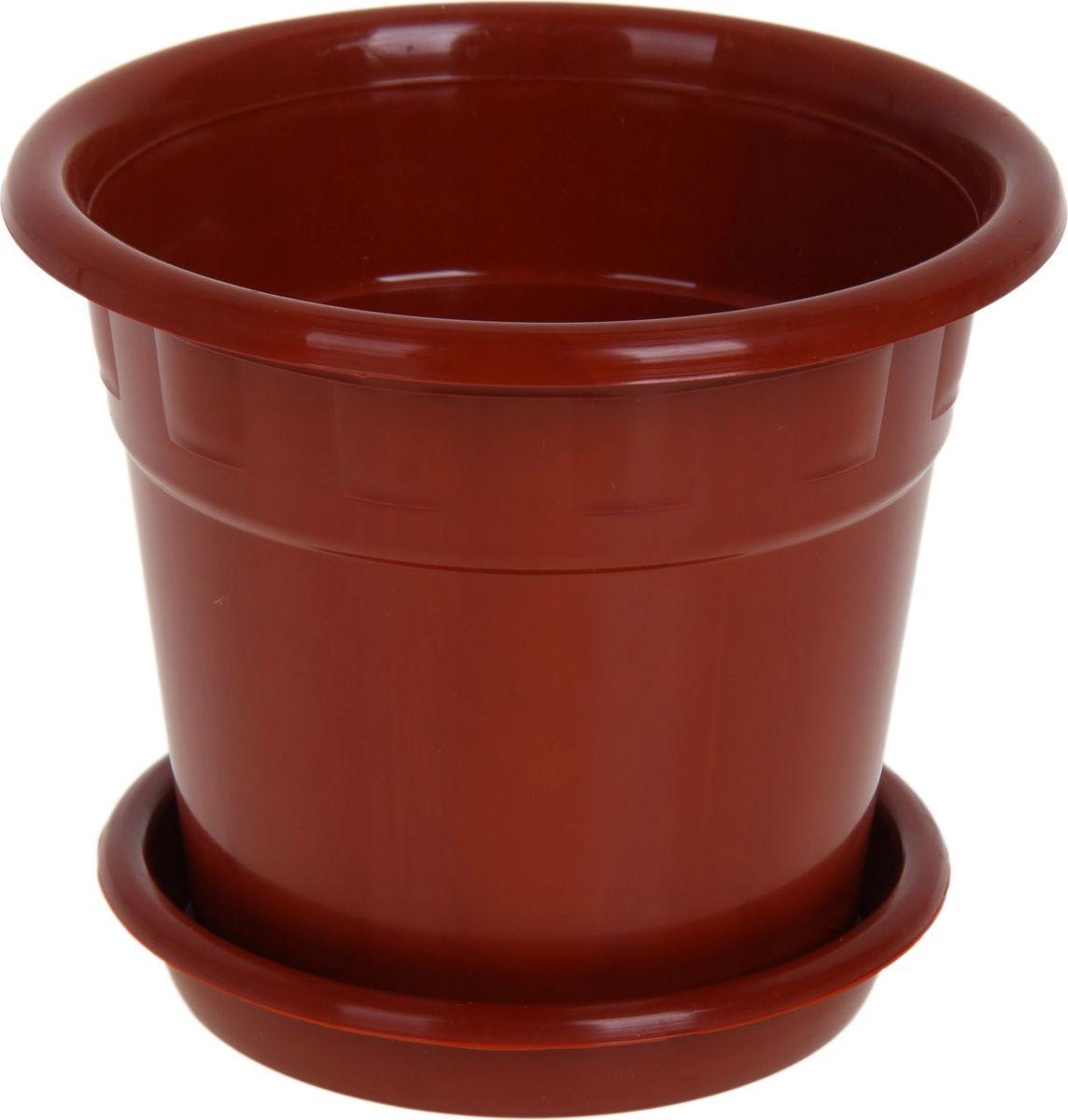 Горшок для цветов Пластик, с поддоном, цвет: коричневый, 1 л1178566Горшок для цветов Пластик обладает малым весом и высокой прочностью. С лёгкостью переносите горшки и кашпо с места на место, ставьте их на столики или полки, подвешивайте под потолок, не беспокоясь о нагрузке. Пластиковые изделия не нуждаются в специальных условиях хранения. Их легко чистить - достаточно просто сполоснуть тёплой водой. Пластиковые кашпо не царапают и не загрязняют поверхности, на которых стоят. Пластик дольше хранит влагу, а значит растение реже нуждается в поливе.Пластмасса не пропускает воздух, а значит, корневой системе растения не грозят резкие перепады температур. Соблюдая нехитрые правила ухода, вы можете заметно продлить срок службы горшков, вазонов и кашпо из пластика:- всегда учитывайте размер кроны и корневой системы растения (при разрастании большое растение способно повредить маленький горшок). - берегите изделие от воздействия прямых солнечных лучей, чтобы кашпо и горшки не выцветали. - держите кашпо и горшки из пластика подальше от нагревающихся поверхностей. Любой, даже самый современный и продуманный интерьер будет не завершённым без растений. Они не только очищают воздух и насыщают его кислородом, но и заметно украшают окружающее пространство. Такому полезному члену семьи просто необходимо красивое и функциональное кашпо, оригинальный горшок или необычная ваза!