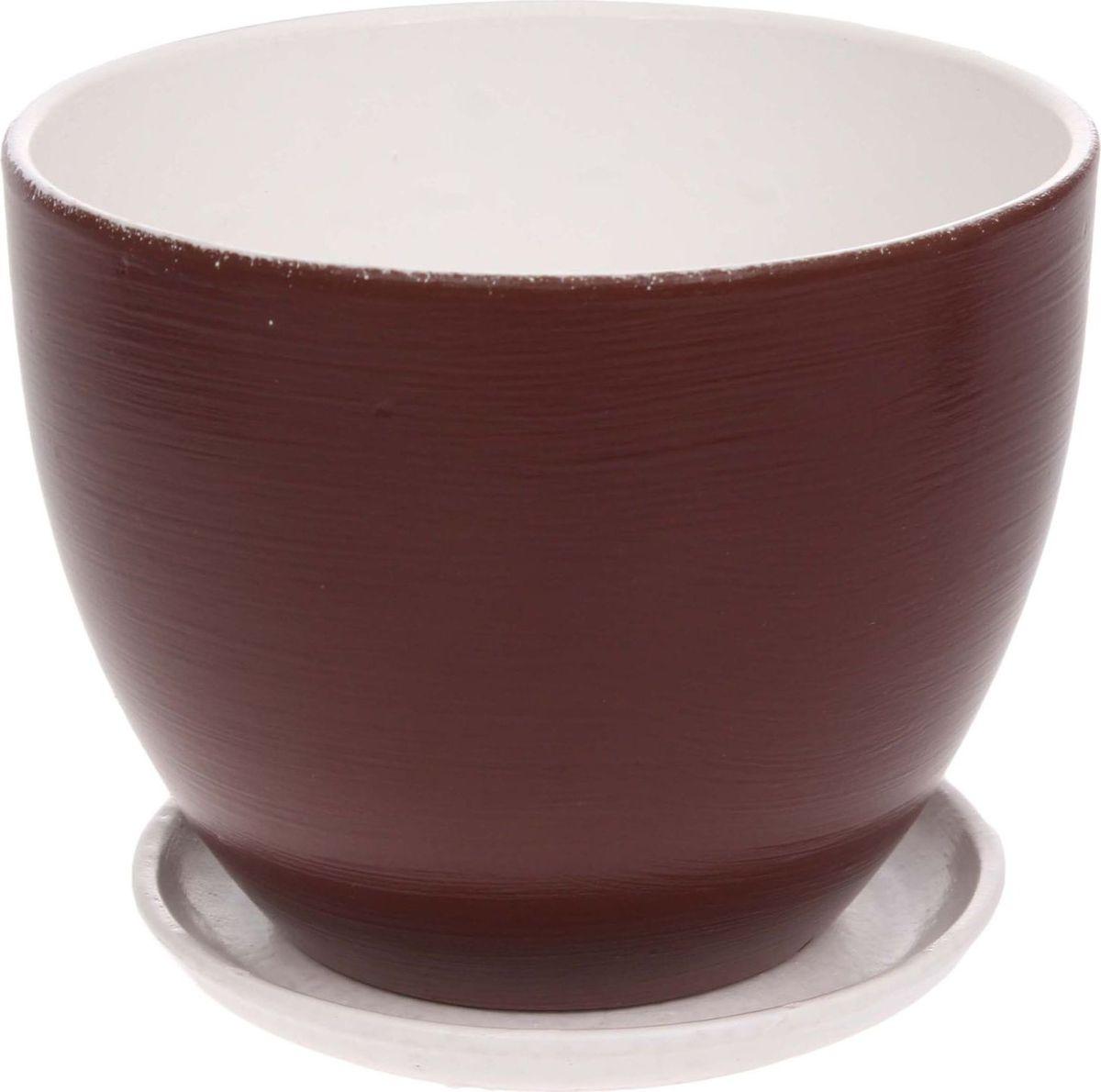 Кашпо Драже, цвет: коричневый, 1,1 л1186594Комнатные растения — всеобщие любимцы. Они радуют глаз, насыщают помещение кислородом и украшают пространство. Каждому из них необходим свой удобный и красивый дом. Кашпо из керамики прекрасно подходят для высадки растений: за счет пластичности глины и разных способов обработки существует великое множество форм и дизайнов пористый материал позволяет испаряться лишней влаге воздух, необходимый для дыхания корней, проникает сквозь керамические стенки! позаботится о зеленом питомце, освежит интерьер и подчеркнет его стиль.