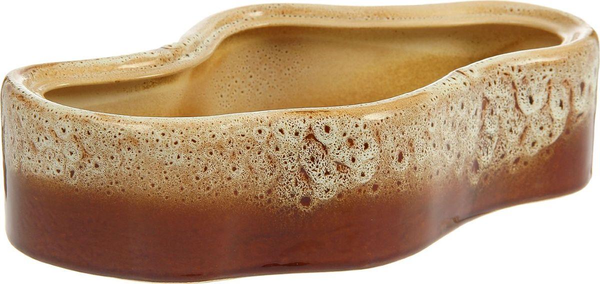 Кашпо Озеро, цвет: бежевый, коричневый, 20 х 33 х 8 см1210251Комнатные растения - всеобщие любимцы. Они радуют глаз, насыщают помещение кислородом и украшают пространство. Каждому из них необходим свой удобный и красивый дом. Кашпо из керамики прекрасно подходят для высадки растений. За счет пластичности глины и разных способов обработки существует великое множество форм и дизайнов. Пористый материал позволяет испаряться лишней влаге, а воздух, необходимый для дыхания корней, проникает сквозь керамические стенки. Кашпо позаботится о растениях, освежит интерьер и подчеркнет его стиль.