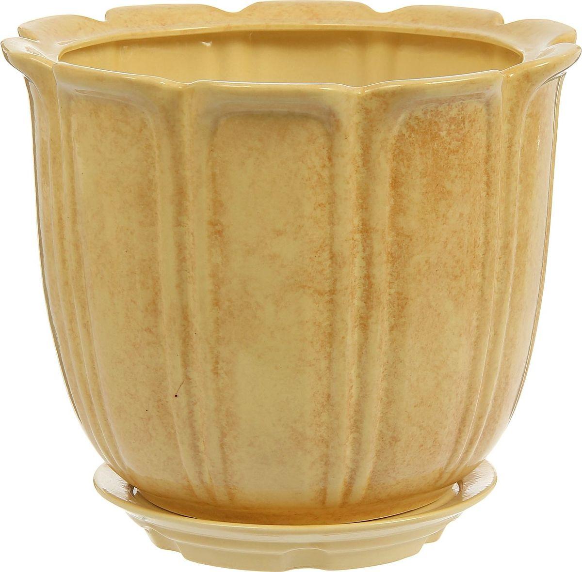 Кашпо Элита, цвет: желтый, 12 л1239044Комнатные растения — всеобщие любимцы. Они радуют глаз, насыщают помещение кислородом и украшают пространство. Каждому из них необходим свой удобный и красивый дом. Кашпо из керамики прекрасно подходят для высадки растений: за счёт пластичности глины и разных способов обработки существует великое множество форм и дизайновпористый материал позволяет испаряться лишней влагевоздух, необходимый для дыхания корней, проникает сквозь керамические стенки! #name# позаботится о зелёном питомце, освежит интерьер и подчеркнёт его стиль.