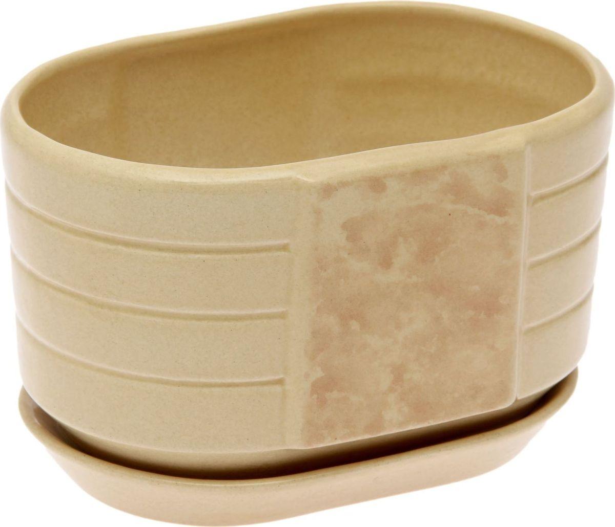Кашпо Овал, цвет: бежевый, 1,1 л1241313Комнатные растения — всеобщие любимцы. Они радуют глаз, насыщают помещение кислородом и украшают пространство. Каждому из них необходим свой удобный и красивый дом. Кашпо из керамики прекрасно подходят для высадки растений: за счёт пластичности глины и разных способов обработки существует великое множество форм и дизайновпористый материал позволяет испаряться лишней влагевоздух, необходимый для дыхания корней, проникает сквозь керамические стенки! #name# позаботится о зелёном питомце, освежит интерьер и подчеркнёт его стиль.