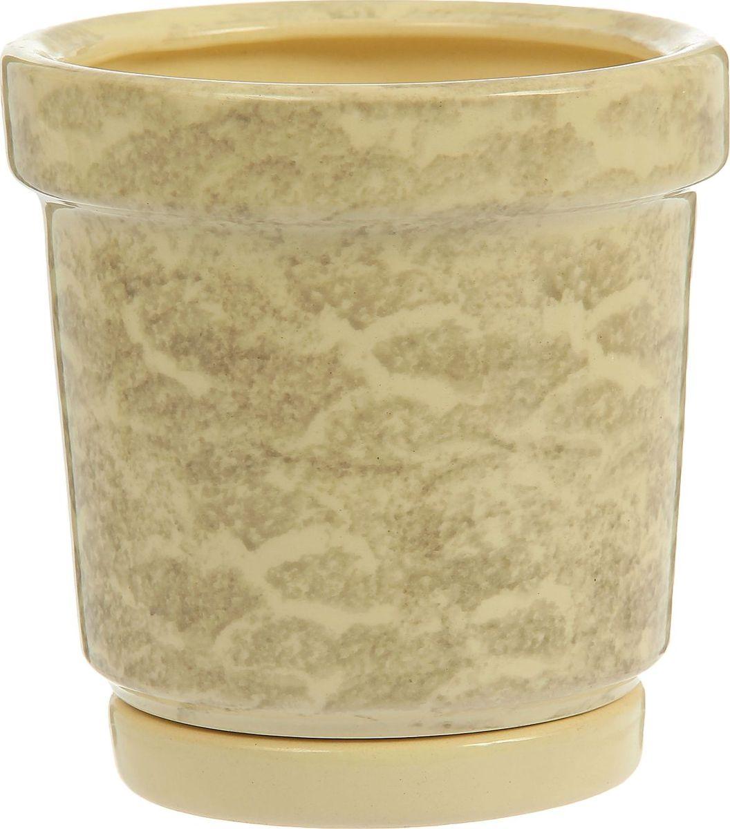 Кашпо Семейка, цвет: белый, 1,2 л1241374Комнатные растения — всеобщие любимцы. Они радуют глаз, насыщают помещение кислородом и украшают пространство. Каждому из них необходим свой удобный и красивый дом. Кашпо из керамики прекрасно подходят для высадки растений: за счёт пластичности глины и разных способов обработки существует великое множество форм и дизайновпористый материал позволяет испаряться лишней влагевоздух, необходимый для дыхания корней, проникает сквозь керамические стенки! #name# позаботится о зелёном питомце, освежит интерьер и подчеркнёт его стиль.