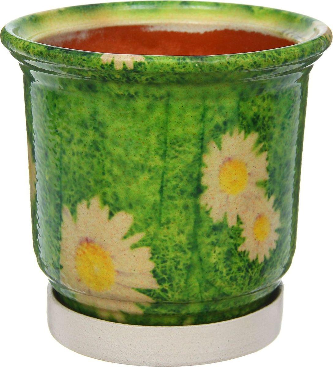 Кашпо Цветник. Ромашки, цвет: зеленый, 1 л1253873Комнатные растения — всеобщие любимцы. Они радуют глаз, насыщают помещение кислородом и украшают пространство. Каждому из них необходим свой удобный и красивый дом. Кашпо из керамики прекрасно подходят для высадки растений: за счет пластичности глины и разных способов обработки существует великое множество форм и дизайнов пористый материал позволяет испаряться лишней влаге воздух, необходимый для дыхания корней, проникает сквозь керамические стенки! позаботится о зеленом питомце, освежит интерьер и подчеркнет его стиль.