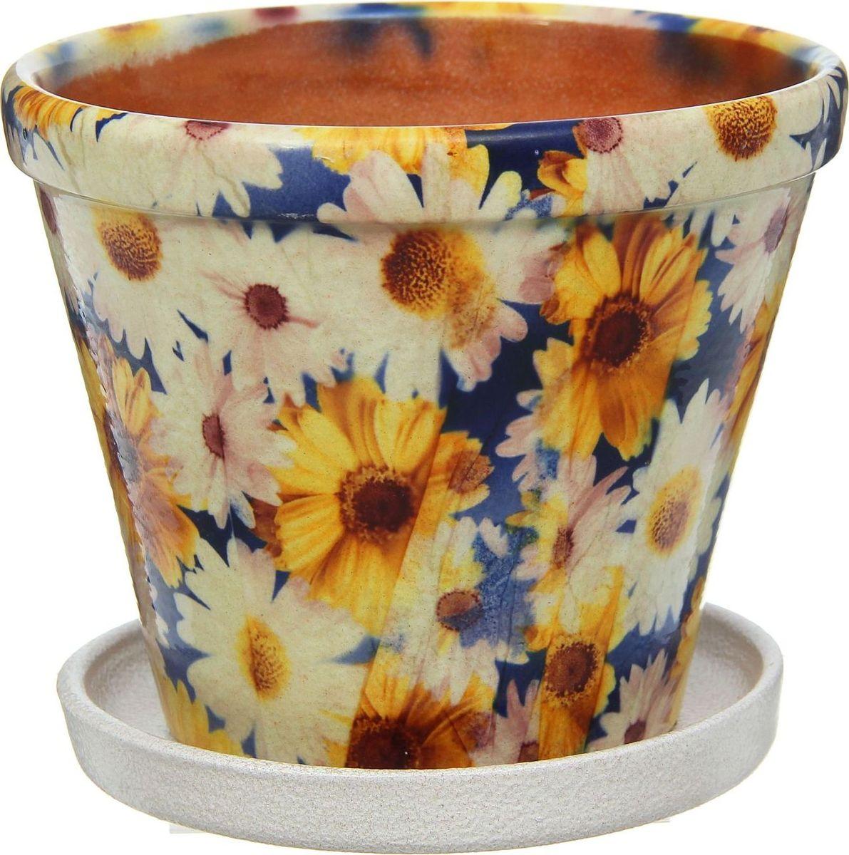 Кашпо Цветник. Ромашки, цвет: синий, 1,5 л1253877Комнатные растения — всеобщие любимцы. Они радуют глаз, насыщают помещение кислородом и украшают пространство. Каждому из них необходим свой удобный и красивый дом. Кашпо из керамики прекрасно подходят для высадки растений: за счет пластичности глины и разных способов обработки существует великое множество форм и дизайнов пористый материал позволяет испаряться лишней влаге воздух, необходимый для дыхания корней, проникает сквозь керамические стенки! позаботится о зеленом питомце, освежит интерьер и подчеркнет его стиль.