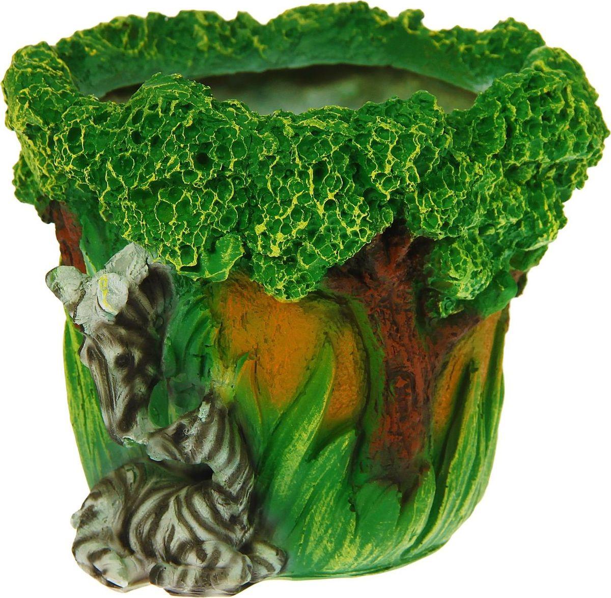 Кашпо Зебры, 20 х 20 х 17 см1259552Комнатные растения — всеобщие любимцы. Они радуют глаз, насыщают помещение кислородом и украшают пространство. Каждому из растений необходим свой удобный и красивый дом. Поселите зеленого питомца в яркое и оригинальное фигурное кашпо. Выберите подходящую форму для детской, спальни, гостиной, балкона, офиса или террасы. позаботится о растении, украсит окружающее пространство и подчеркнет его оригинальный стиль.