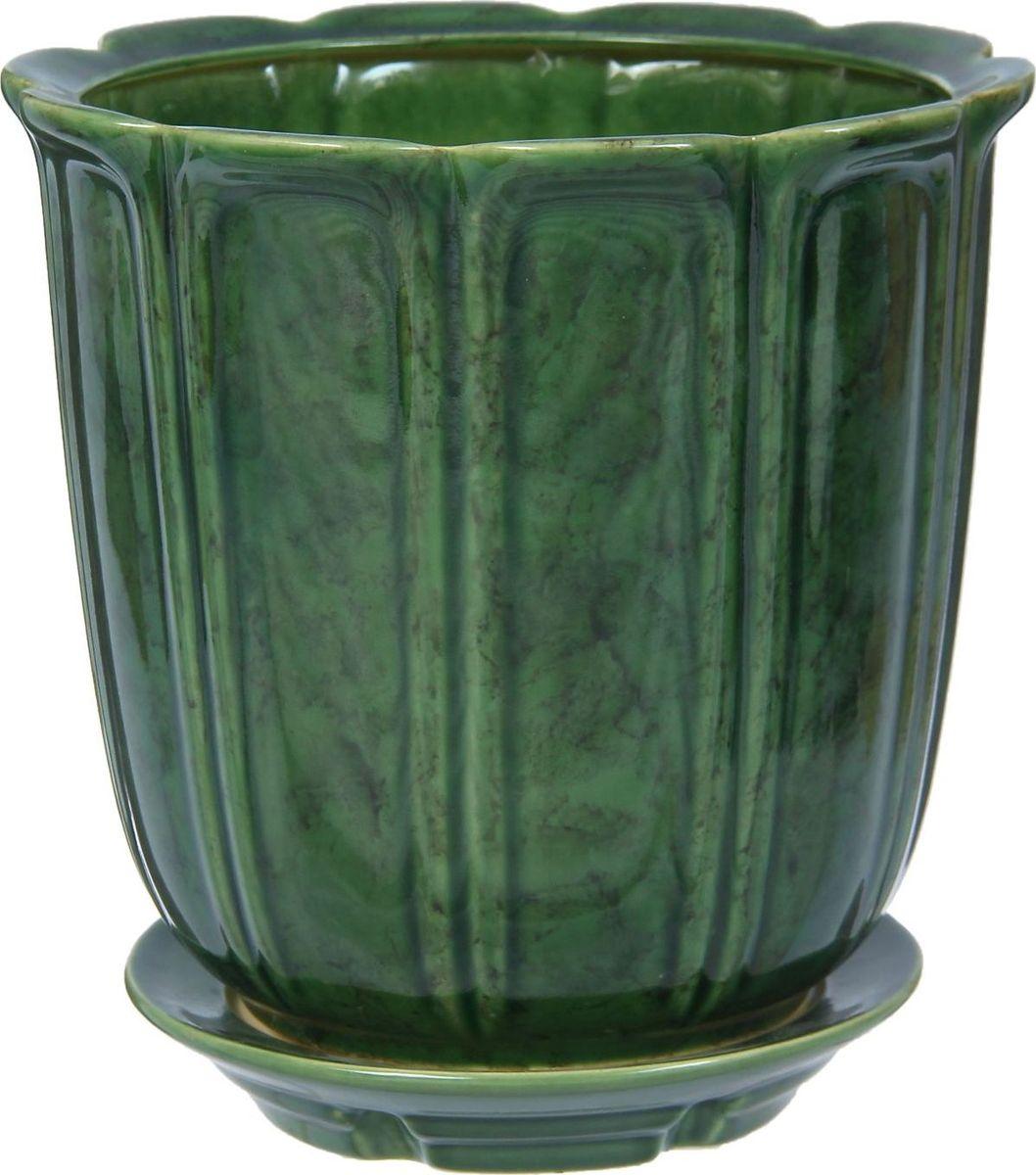 Кашпо Элита, цвет: зеленый, 5,5 л1300915Комнатные растения — всеобщие любимцы. Они радуют глаз, насыщают помещение кислородом и украшают пространство. Каждому из них необходим свой удобный и красивый дом. Кашпо из керамики прекрасно подходят для высадки растений: за счёт пластичности глины и разных способов обработки существует великое множество форм и дизайновпористый материал позволяет испаряться лишней влагевоздух, необходимый для дыхания корней, проникает сквозь керамические стенки! #name# позаботится о зелёном питомце, освежит интерьер и подчеркнёт его стиль.