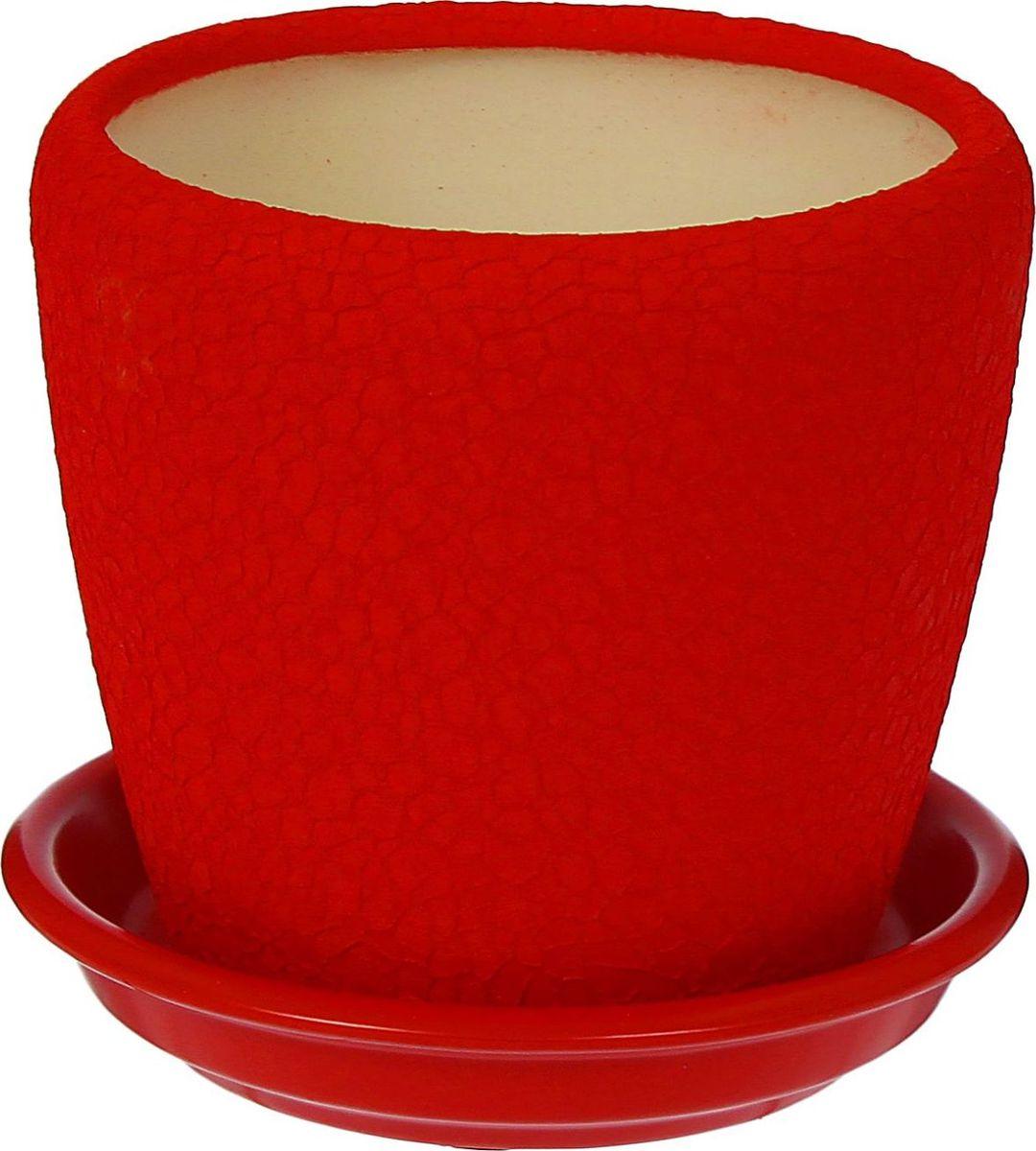 Кашпо Керамика ручной работы Грация, цвет: красный, 1,2 л1309267Комнатные растения — всеобщие любимцы. Они радуют глаз, насыщают помещение кислородом и украшают пространство. Каждому из них необходим свой удобный и красивый дом. Кашпо из керамики прекрасно подходят для высадки растений: за счет пластичности глины и разных способов обработки существует великое множество форм и дизайнов пористый материал позволяет испаряться лишней влаге воздух, необходимый для дыхания корней, проникает сквозь керамические стенки! позаботится о зеленом питомце, освежит интерьер и подчеркнет его стиль.