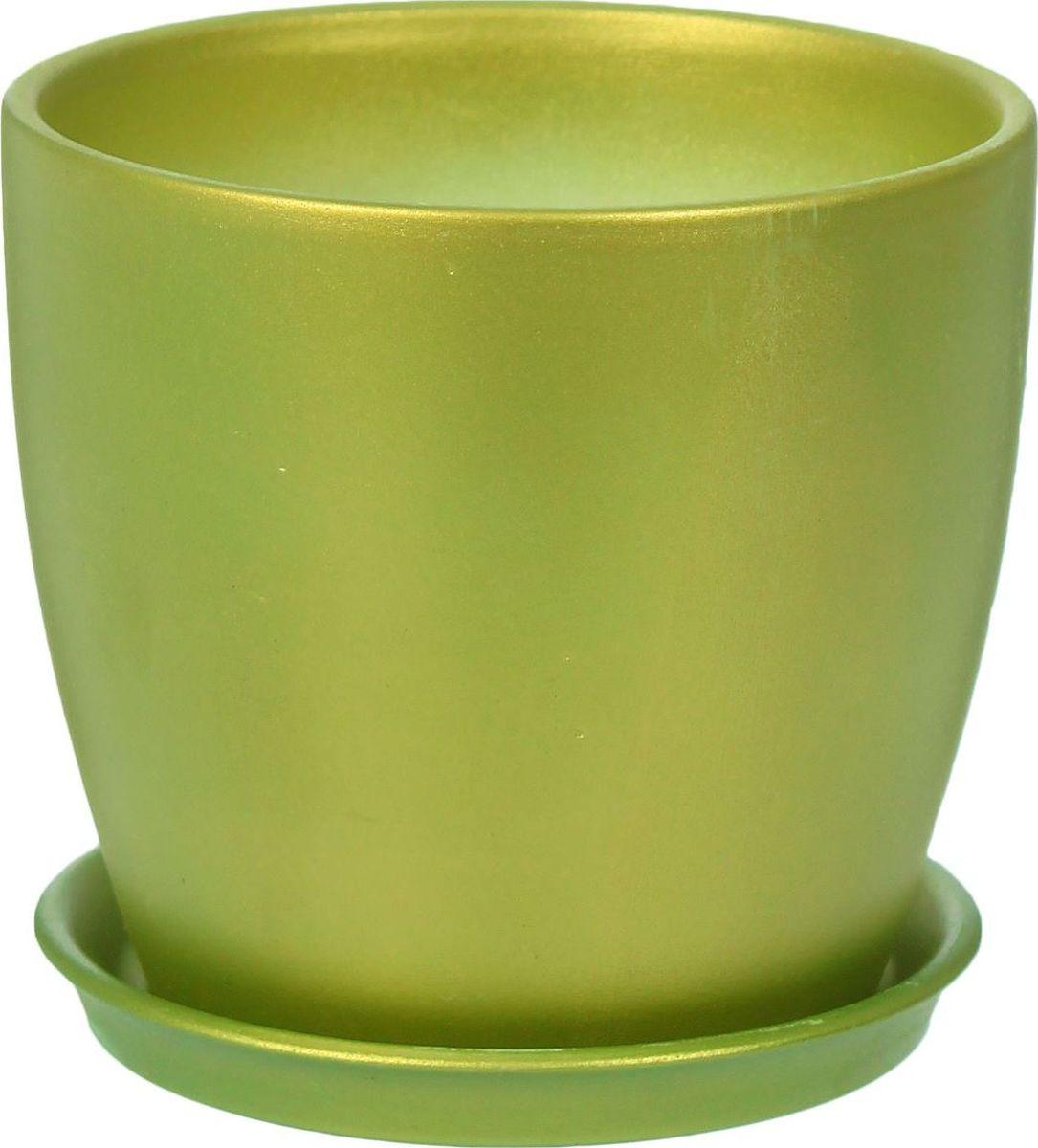 Кашпо Керамика ручной работы Осень, цвет: светло-зеленый, 1 л1312977Комнатные растения - всеобщие любимцы. Они радуют глаз, насыщают помещение кислородом и украшают пространство. Каждому из них необходим свой удобный и красивый дом. Кашпо из керамики прекрасно подходят для высадки растений:пористый материал позволяет испаряться лишней влаге;воздух, необходимый для дыхания корней, проникает сквозь керамические стенки. Кашпо Осень позаботится о зеленом питомце, освежит интерьер и подчеркнет его стиль.