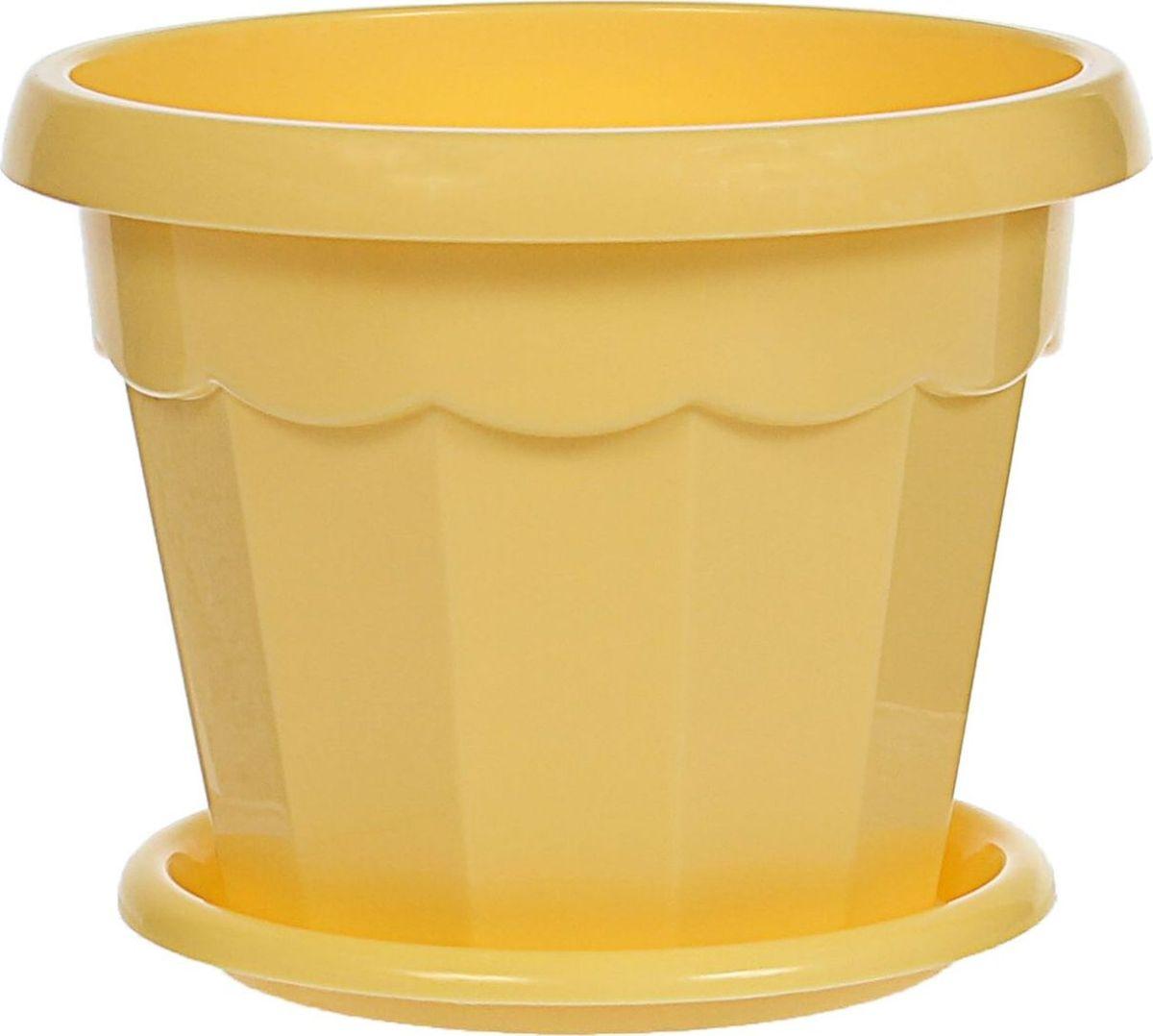 Горшок для цветов Доляна Эрика, с поддоном, цвет: желтый, 700 мл1345256Любой, даже самый современный и продуманный интерьер будет не завершенным без растений. Они не только очищают воздух и насыщают его кислородом, но и заметно украшают окружающее пространство. Такому полезному члену семьи просто необходимо красивое и функциональное кашпо, оригинальный горшок или необычная ваза! Мы предлагаем - Горшок для цветов 0,7 л с поддоном Эрика, цвет желтый! Оптимальный выбор материала - это пластмасса! Почему мы так считаем? Малый вес. С легкостью переносите горшки и кашпо с места на место, ставьте их на столики или полки, подвешивайте под потолок, не беспокоясь о нагрузке. Простота ухода. Пластиковые изделия не нуждаются в специальных условиях хранения. Их легко чистить достаточно просто сполоснуть теплой водой. Никаких царапин. Пластиковые кашпо не царапают и не загрязняют поверхности, на которых стоят. Пластик дольше хранит влагу, а значит растение реже нуждается в поливе. Пластмасса не пропускает воздух корневой системе растения не грозят резкие перепады температур. Огромный выбор форм, декора и расцветок вы без труда подберете что-то, что идеально впишется в уже существующий интерьер. Соблюдая нехитрые правила ухода, вы можете заметно продлить срок службы горшков, вазонов и кашпо из пластика: всегда учитывайте размер кроны и корневой системы растения (при разрастании большое растение способно повредить маленький горшок) берегите изделие от воздействия прямых солнечных лучей, чтобы кашпо и горшки не выцветали держите кашпо и горшки из пластика подальше от нагревающихся поверхностей. Создавайте прекрасные цветочные композиции, выращивайте рассаду или необычные растения, а низкие цены позволят вам не ограничивать себя в выборе.