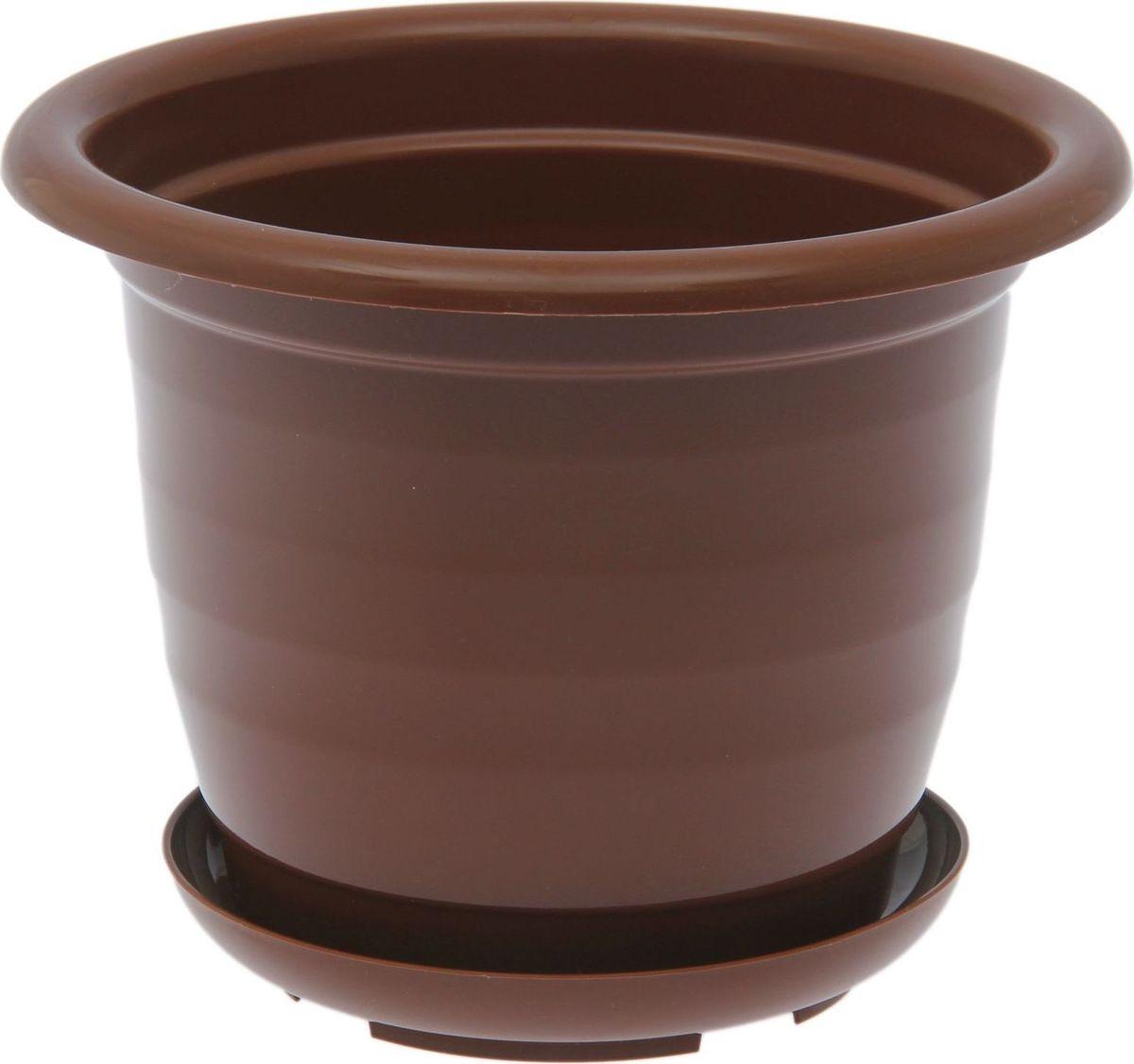Горшок для цветов Доляна, цвет: коричневый, 2 л1345278Горшок для цветов Доляна выполнен из пластика. Пластик дольше хранит влагу, а значит, растение реже нуждается в поливе, и не пропускает воздух, поэтому корневой системе растения не грозят резкие перепады температур.Пластиковые горшки имеют малый вес, поэтому их с легкостью можно переносить с места на место, ставить на столики или полки, не беспокоясь о нагрузке. Такие кашпо не царапают и не загрязняют поверхности, на которых стоят. Изделие не нуждается в специальных условиях хранения. Его легко чистить - достаточно просто сполоснуть теплой водой. Любой, даже самый современный и продуманный интерьер будет незавершенным без растений. Они не только очищают воздух и насыщают его кислородом, но и украшают окружающее пространство. Диаметр горшка: 19 см. Высота горшка: 15 см.