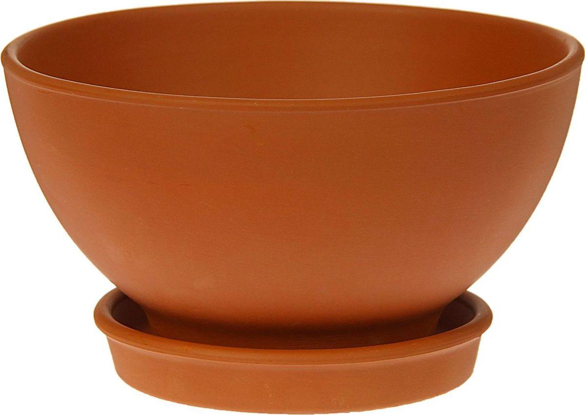 Кашпо Керамика ручной работы Стандарт, цвет: коричневый, 1 л1354684Комнатные растения — всеобщие любимцы. Они радуют глаз, насыщают помещение кислородом и украшают пространство. Каждому из них необходим свой удобный и красивый дом. Кашпо из керамики прекрасно подходят для высадки растений: за счет пластичности глины и разных способов обработки существует великое множество форм и дизайнов пористый материал позволяет испаряться лишней влаге воздух, необходимый для дыхания корней, проникает сквозь керамические стенки! позаботится о зеленом питомце, освежит интерьер и подчеркнет его стиль.