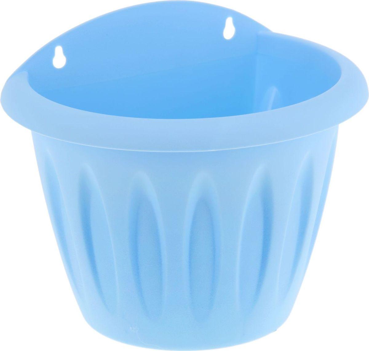 Кашпо Martika Фелиция, настенное, цвет: голубой, 20 х 14 х 17 см1355404Настенный горшок для цветов Martika Фелиция выполнен из пластика. Пластиковые изделия не нуждаются в специальных условиях хранения. Их легко чистить - достаточно просто сполоснуть теплой водой. Они не царапают и не загрязняют поверхности, на которых стоят. Пластик дольше хранит влагу, а значит - растение реже нуждается в поливе, а также не пропускает воздух - корневой системе растения не грозят резкие перепады температур.