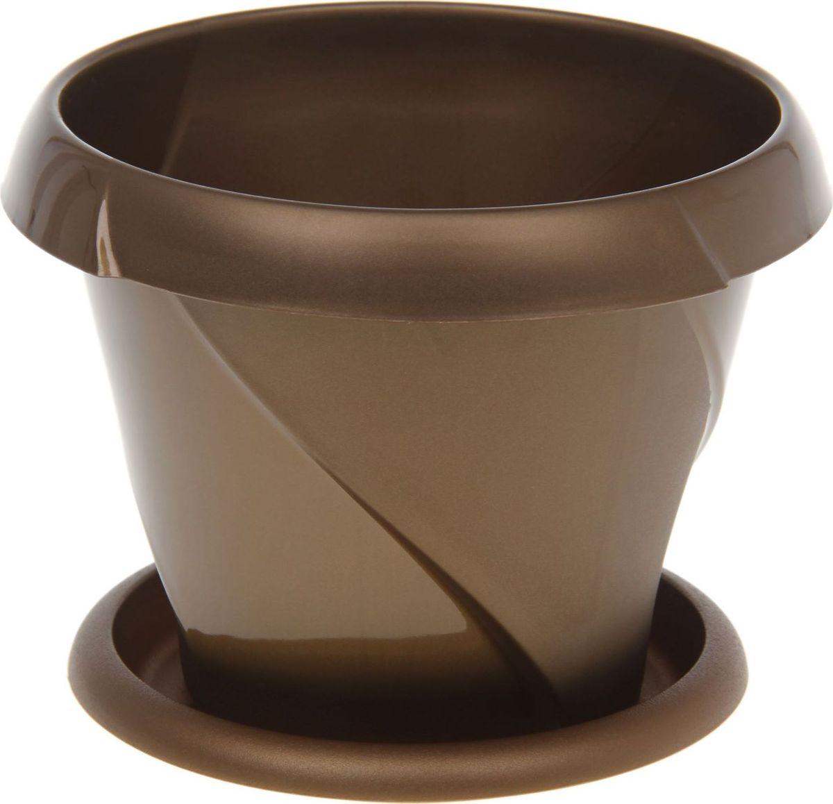 Кашпо Martika Флориана, с поддоном, цвет: золотистый, 0,3 л1407045Декоративное кашпо с поддоном, выполненное из высококачественного пластика, предназначено для посадки декоративных растений и станет прекрасным украшением для дома. Оригинальное кашпо украсит окружающее пространство и подчеркнет его оригинальный стиль.
