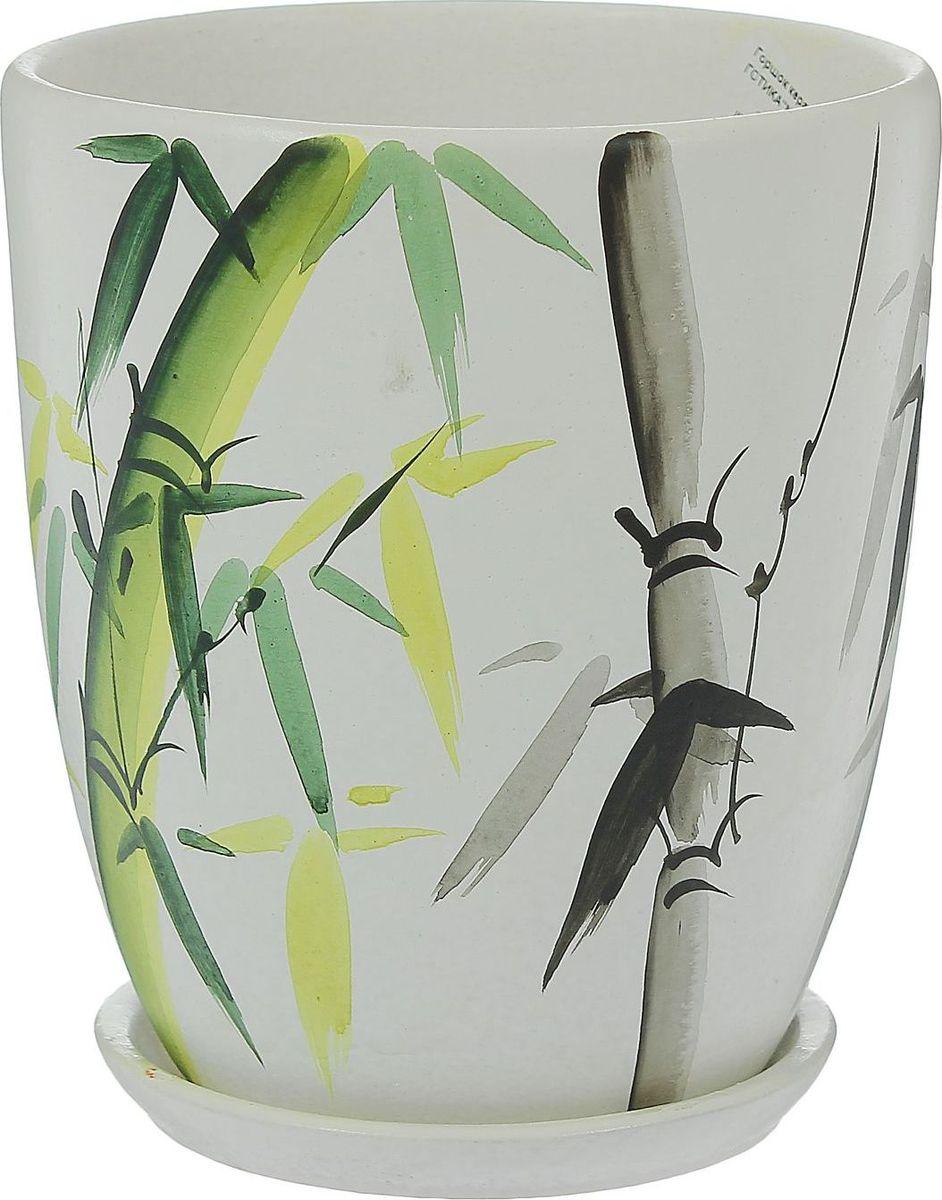 Кашпо Молодой бамбук, 1 л1369829Комнатные растения — всеобщие любимцы. Они радуют глаз, насыщают помещение кислородом и украшают пространство. Каждому из них необходим свой удобный и красивый дом. Кашпо из керамики прекрасно подходят для высадки растений: за счет пластичности глины и разных способов обработки существует великое множество форм и дизайнов пористый материал позволяет испаряться лишней влаге воздух, необходимый для дыхания корней, проникает сквозь керамические стенки! позаботится о зеленом питомце, освежит интерьер и подчеркнет его стиль.