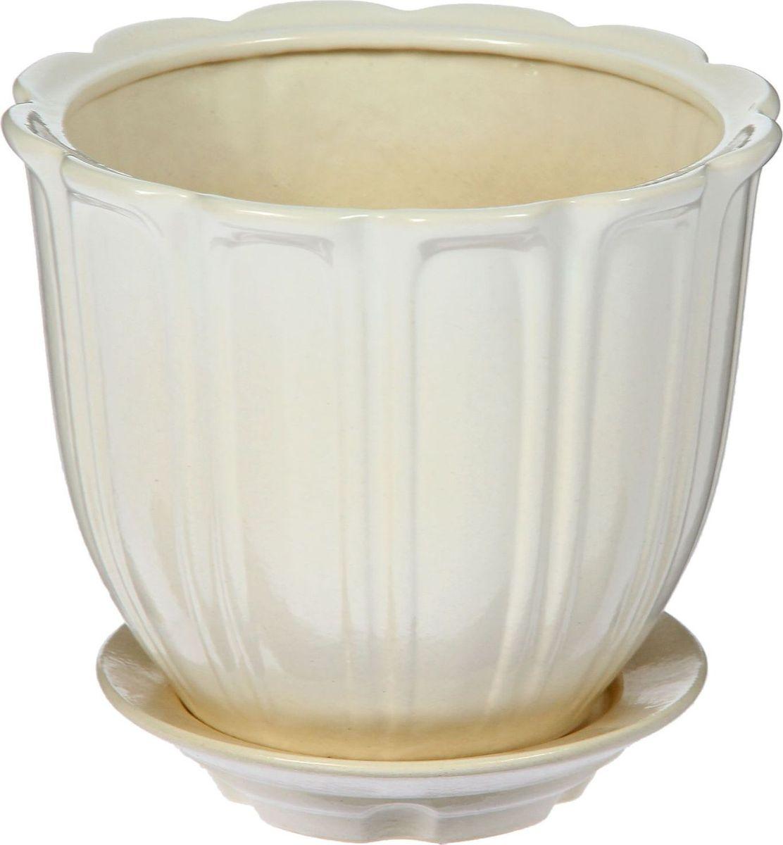 Кашпо Элита, цвет: белый, 5,5 л1378290Комнатные растения — всеобщие любимцы. Они радуют глаз, насыщают помещение кислородом и украшают пространство. Каждому из них необходим свой удобный и красивый дом. Кашпо из керамики прекрасно подходят для высадки растений: за счёт пластичности глины и разных способов обработки существует великое множество форм и дизайновпористый материал позволяет испаряться лишней влагевоздух, необходимый для дыхания корней, проникает сквозь керамические стенки! #name# позаботится о зелёном питомце, освежит интерьер и подчеркнёт его стиль.