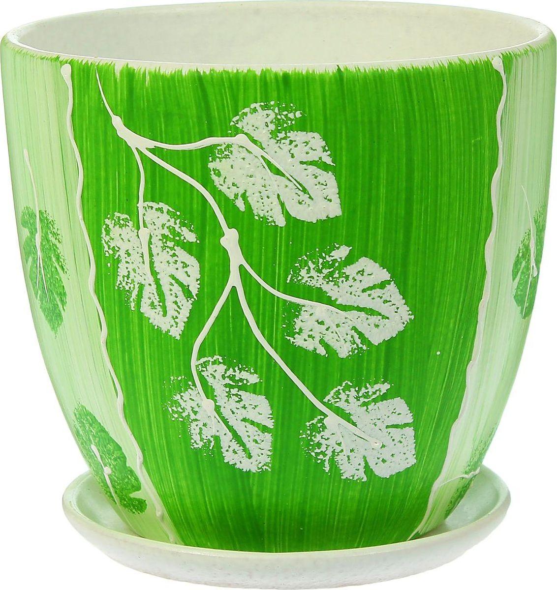Кашпо Акварель, цвет: зеленый, 2,6 л1403452Комнатные растения — всеобщие любимцы. Они радуют глаз, насыщают помещение кислородом и украшают пространство. Каждому из них необходим свой удобный и красивый дом. Кашпо из керамики прекрасно подходят для высадки растений: за счёт пластичности глины и разных способов обработки существует великое множество форм и дизайновпористый материал позволяет испаряться лишней влагевоздух, необходимый для дыхания корней, проникает сквозь керамические стенки! #name# позаботится о зелёном питомце, освежит интерьер и подчеркнёт его стиль.