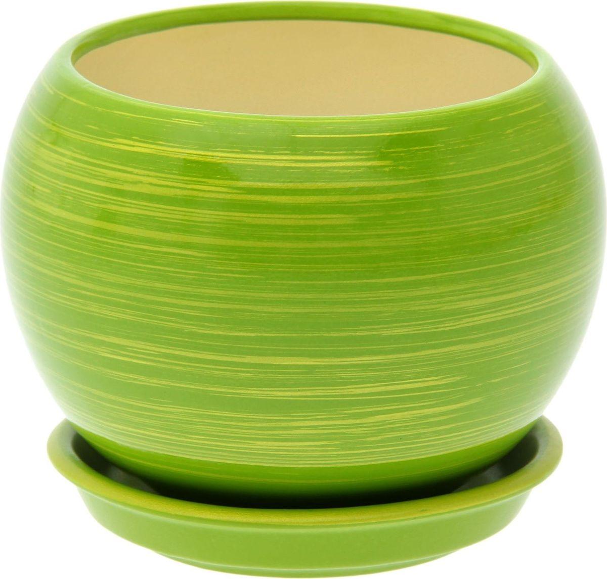 Кашпо Керамика ручной работы Шар, цвет: салатовый, золотой, 9 л1489752Комнатные растения — всеобщие любимцы. Они радуют глаз, насыщают помещение кислородом и украшают пространство. Каждому из них необходим свой удобный и красивый дом. Кашпо из керамики прекрасно подходят для высадки растений: за счет пластичности глины и разных способов обработки существует великое множество форм и дизайнов пористый материал позволяет испаряться лишней влаге воздух, необходимый для дыхания корней, проникает сквозь керамические стенки! Позаботится о зеленом питомце, освежит интерьер и подчеркнет его стиль.