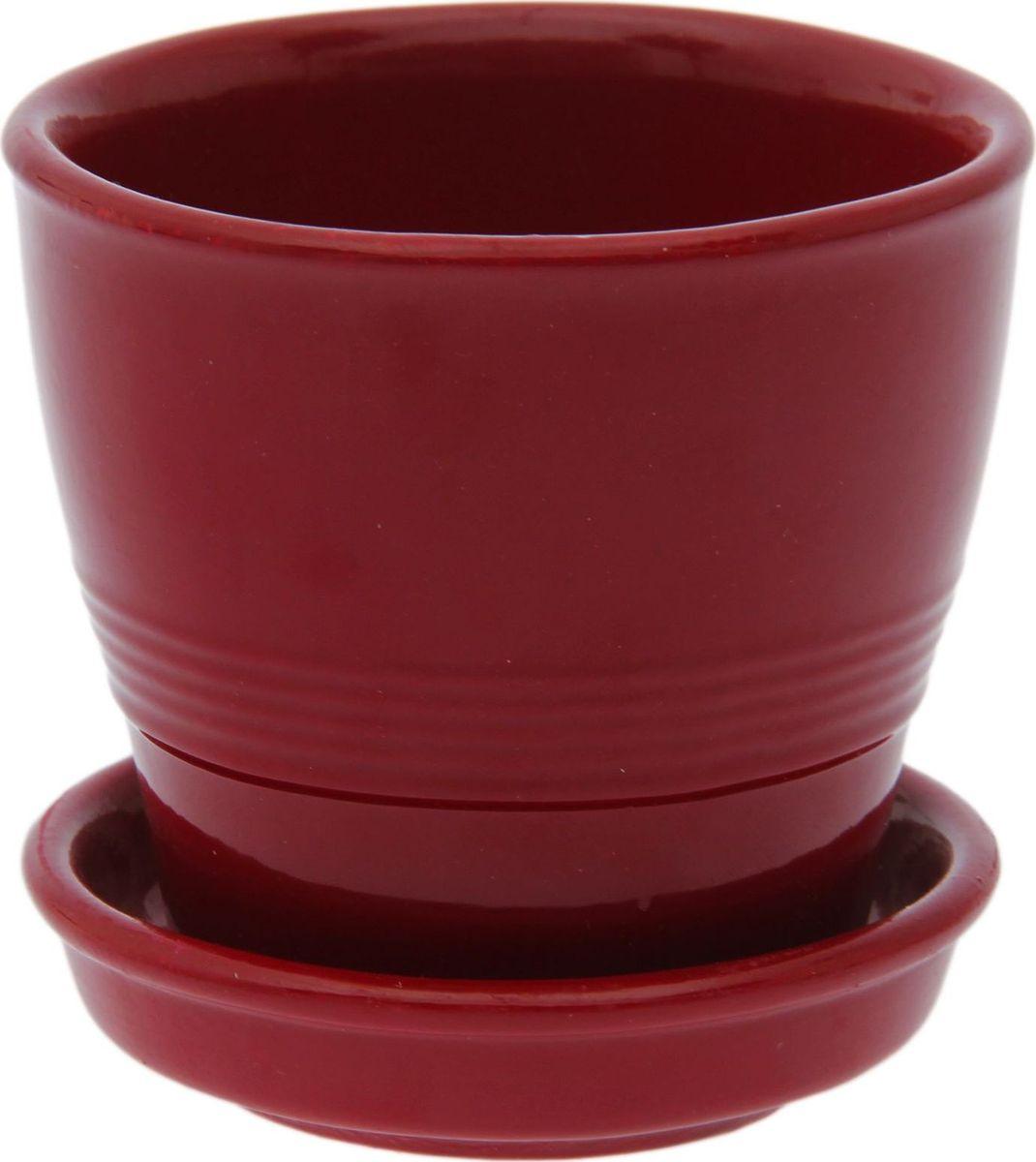 Кашпо Керамика ручной работы Ведро, цвет: бордовый, 0,23 л1498148Комнатные растения — всеобщие любимцы. Они радуют глаз, насыщают помещение кислородом и украшают пространство. Каждому из них необходим свой удобный и красивый дом. Кашпо из керамики прекрасно подходят для высадки растений: за счет пластичности глины и разных способов обработки существует великое множество форм и дизайнов пористый материал позволяет испаряться лишней влаге воздух, необходимый для дыхания корней, проникает сквозь керамические стенки! позаботится о зеленом питомце, освежит интерьер и подчеркнет его стиль.