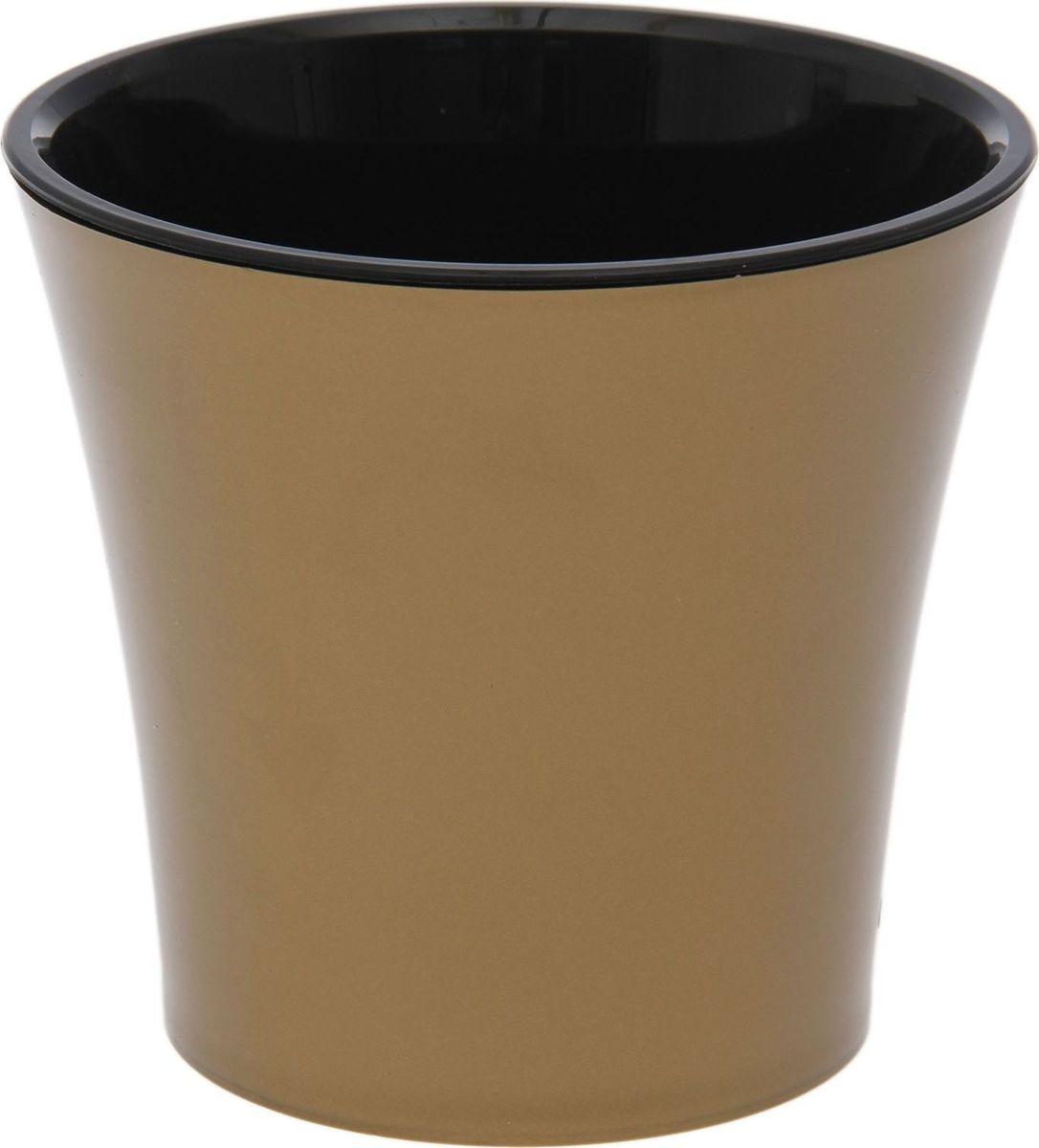 Горшок для цветов Santino Арте, цвет: золотистый, черный, 0,6 л1510704Горшок Santino Арте, выполненный из высококачественного пластика, предназначен для выращивания комнатных цветов, растений и трав. Специальная конструкция обеспечивает вентиляцию в корневой системе растения, а дренажные отверстия позволяют выходить лишней влаге из почвы. Такой горшок порадует вас современным дизайном и функциональностью, а также оригинально украсит интерьер любого помещения. Размеры внутреннего вкладыша - высота 10 см, верхний диаметр - 11 см, нижний - 8 см.