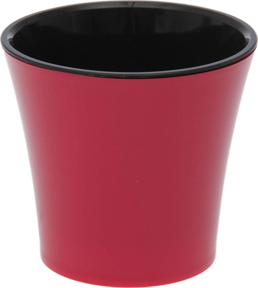 Горшок для цветов Santino Арте, цвет: красный, черный, 0,6 л1170546Горшок Santino Арте, выполненный из высококачественного пластика, предназначен длявыращивания комнатных цветов, растений и трав.Специальная конструкция обеспечивает вентиляцию в корневой системе растения, а дренажныеотверстия позволяют выходить лишней влаге из почвы. Такой горшок порадует вассовременным дизайном и функциональностью, а также оригинально украсит интерьер любогопомещения. Размеры внутреннего вкладыша - высота 10 см, верхний диаметр - 11 см,нижний - 8 см.