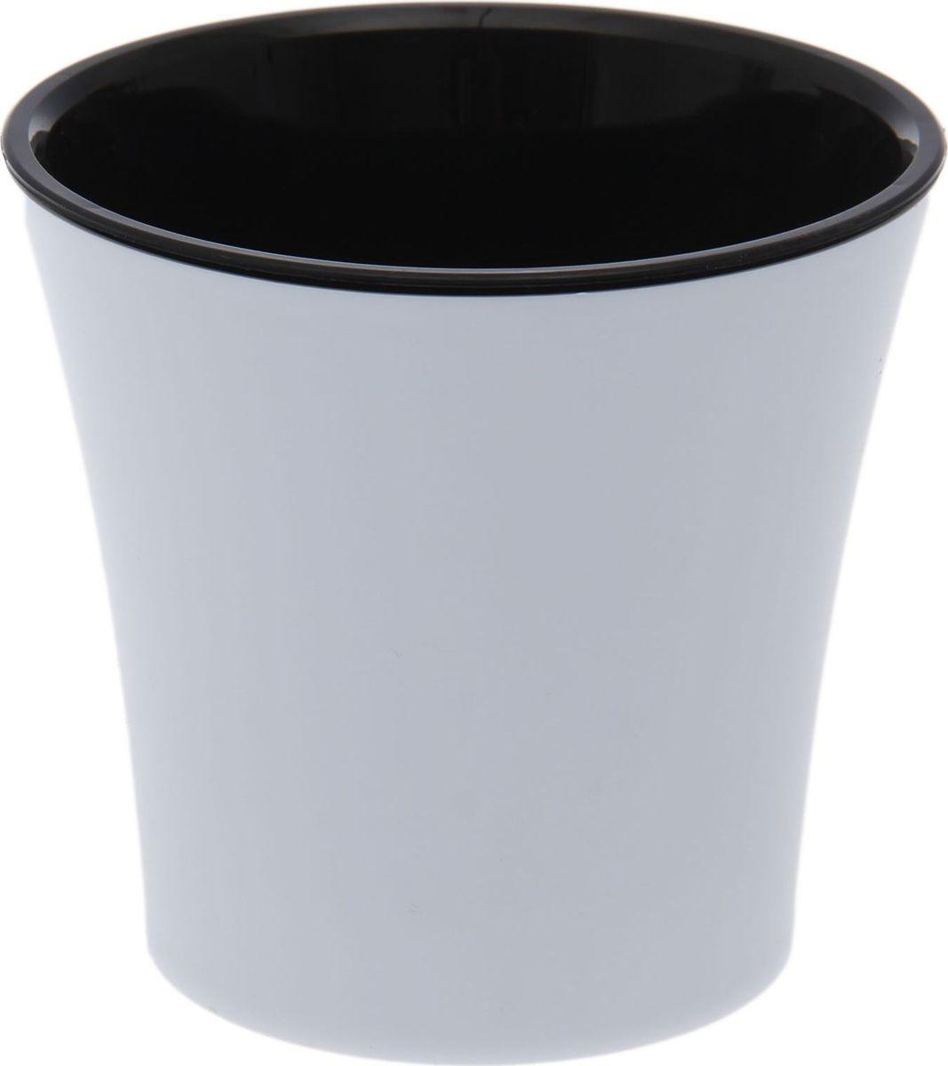Горшок для цветов Santino Арте, цвет: белый, черный, 0,6 л1510706Горшок Santino Арте, выполненный из высококачественного пластика, предназначен для выращивания комнатных цветов, растений и трав. Специальная конструкция обеспечивает вентиляцию в корневой системе растения, а дренажные отверстия позволяют выходить лишней влаге из почвы. Такой горшок порадует вас современным дизайном и функциональностью, а также оригинально украсит интерьер любого помещения. Размеры внутреннего вкладыша - высота 10 см, верхний диаметр - 11 см, нижний - 8 см.