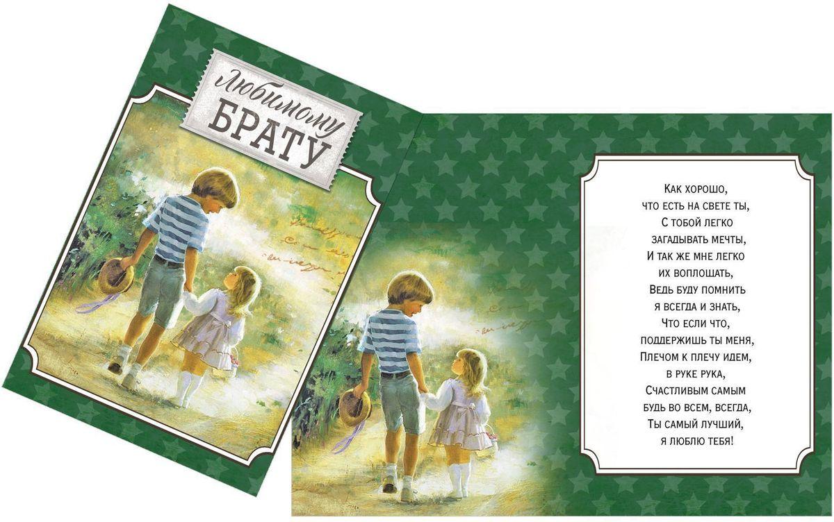 Открытка Дарите cчастье Любимому брату, 12 х 18 см1610247Атмосферу праздника создают детали: свечи, цветы, бокалы, воздушные шары и поздравительные открытки - яркие и веселые, романтичные и нежные, милые и трогательные. Расскажите о своих чувствах дорогому для вас человеку, поделитесь радостью с близкими и друзьями. Открытка с креативным дизайном вам в этом поможет.