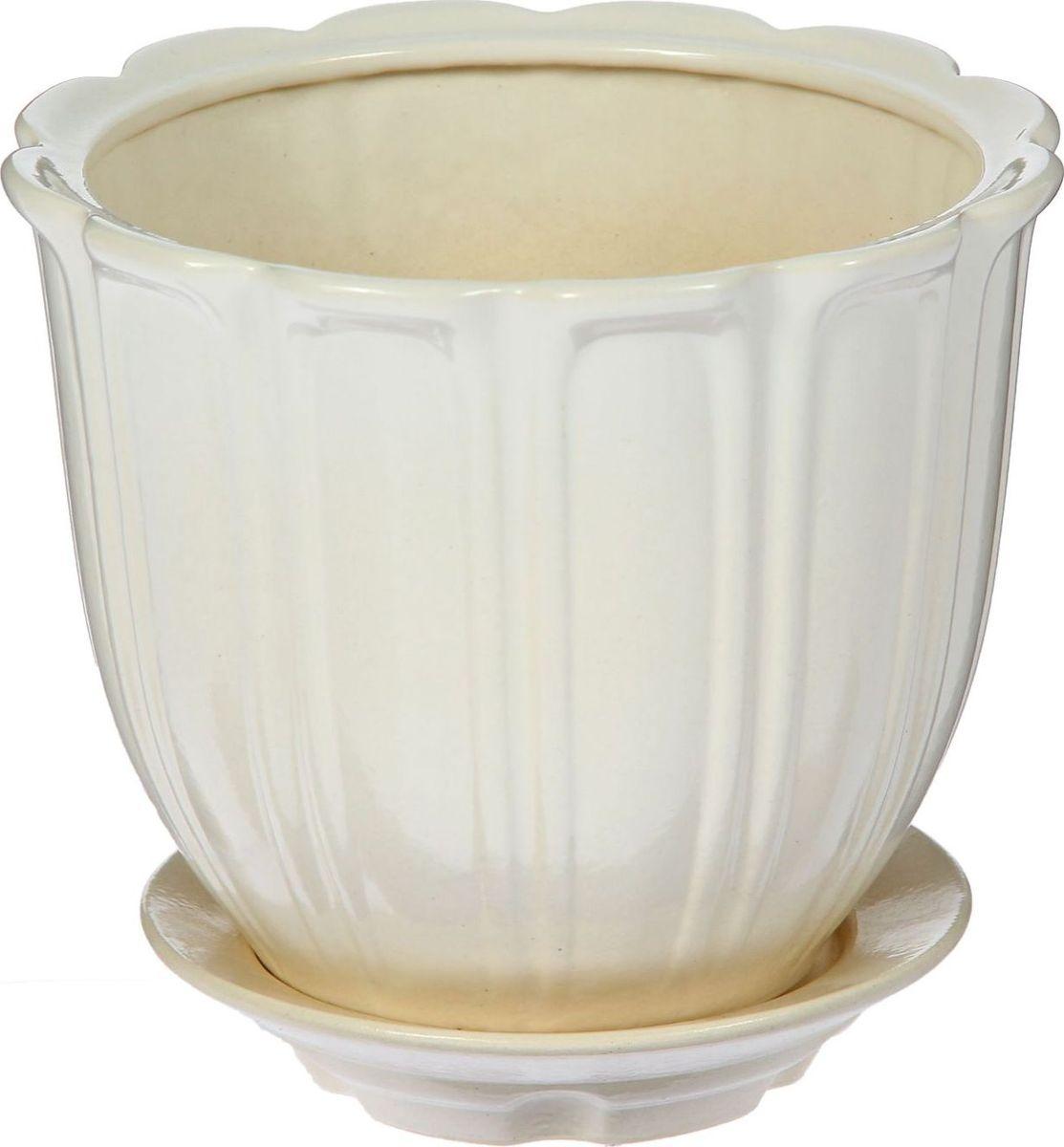 Кашпо Элита, цвет: белый, 2,6 л1431000Комнатные растения — всеобщие любимцы. Они радуют глаз, насыщают помещение кислородом и украшают пространство. Каждому из них необходим свой удобный и красивый дом. Кашпо из керамики прекрасно подходят для высадки растений: за счёт пластичности глины и разных способов обработки существует великое множество форм и дизайновпористый материал позволяет испаряться лишней влагевоздух, необходимый для дыхания корней, проникает сквозь керамические стенки! #name# позаботится о зелёном питомце, освежит интерьер и подчеркнёт его стиль.