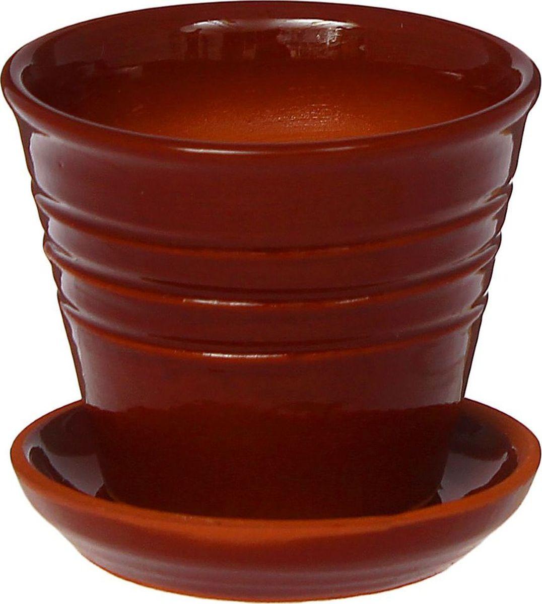 Кашпо Полосы, цвет: коричневый, 10 х 10 х 8 см1437860Комнатные растения — всеобщие любимцы. Они радуют глаз, насыщают помещение кислородом и украшают пространство. Каждому из них необходим свой удобный и красивый дом. Кашпо из керамики прекрасно подходят для высадки растений: за счёт пластичности глины и разных способов обработки существует великое множество форм и дизайновпористый материал позволяет испаряться лишней влагевоздух, необходимый для дыхания корней, проникает сквозь керамические стенки! #name# позаботится о зелёном питомце, освежит интерьер и подчеркнёт его стиль.