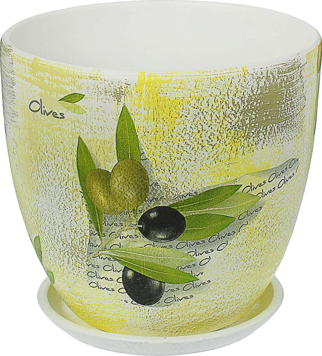 Кашпо Олива, 4,8 л1437909Комнатные растения — всеобщие любимцы. Они радуют глаз, насыщают помещение кислородом и украшают пространство. Каждому из них необходим свой удобный и красивый дом. Кашпо из керамики прекрасно подходят для высадки растений: за счёт пластичности глины и разных способов обработки существует великое множество форм и дизайновпористый материал позволяет испаряться лишней влагевоздух, необходимый для дыхания корней, проникает сквозь керамические стенки! #name# позаботится о зелёном питомце, освежит интерьер и подчеркнёт его стиль.