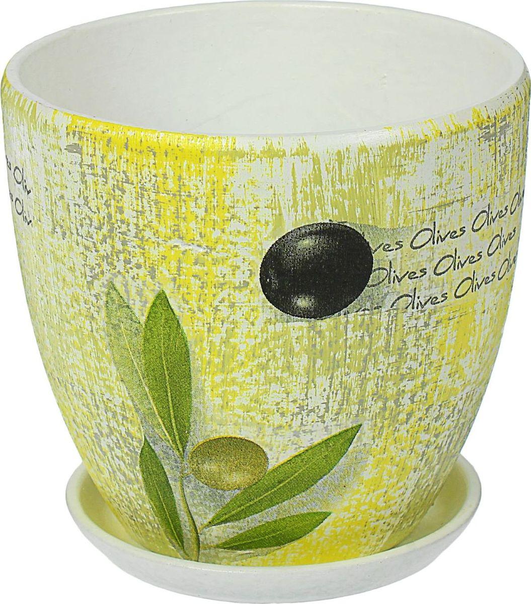 Кашпо Олива, 1,5 л1437911Комнатные растения — всеобщие любимцы. Они радуют глаз, насыщают помещение кислородом и украшают пространство. Каждому из них необходим свой удобный и красивый дом. Кашпо из керамики прекрасно подходят для высадки растений: за счет пластичности глины и разных способов обработки существует великое множество форм и дизайнов пористый материал позволяет испаряться лишней влаге воздух, необходимый для дыхания корней, проникает сквозь керамические стенки! позаботится о зеленом питомце, освежит интерьер и подчеркнет его стиль.