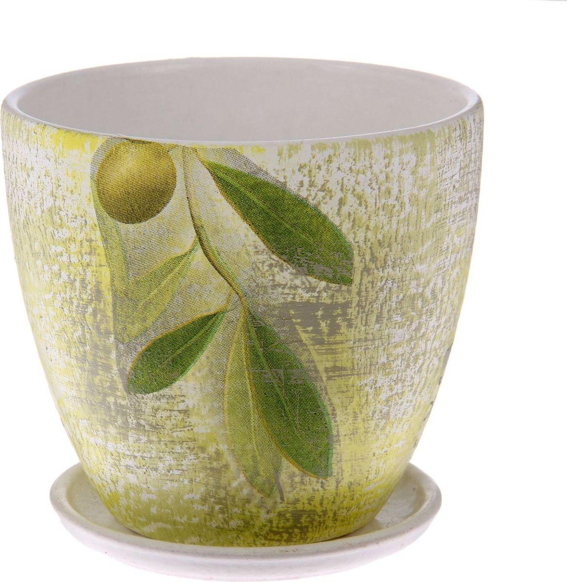 Кашпо Олива, поддоном, цвет: оливковый, белый, 0,8 л1437912Комнатные растения — всеобщие любимцы. Они радуют глаз, насыщают помещение кислородом и украшают пространство. Каждому из них необходим свой удобный и красивый дом. Кашпо из керамики прекрасно подходят для высадки растений: за счет пластичности глины и разных способов обработки существует великое множество форм и дизайнов пористый материал позволяет испаряться лишней влаге воздух, необходимый для дыхания корней, проникает сквозь керамические стенки! позаботится о зеленом питомце, освежит интерьер и подчеркнет его стиль.