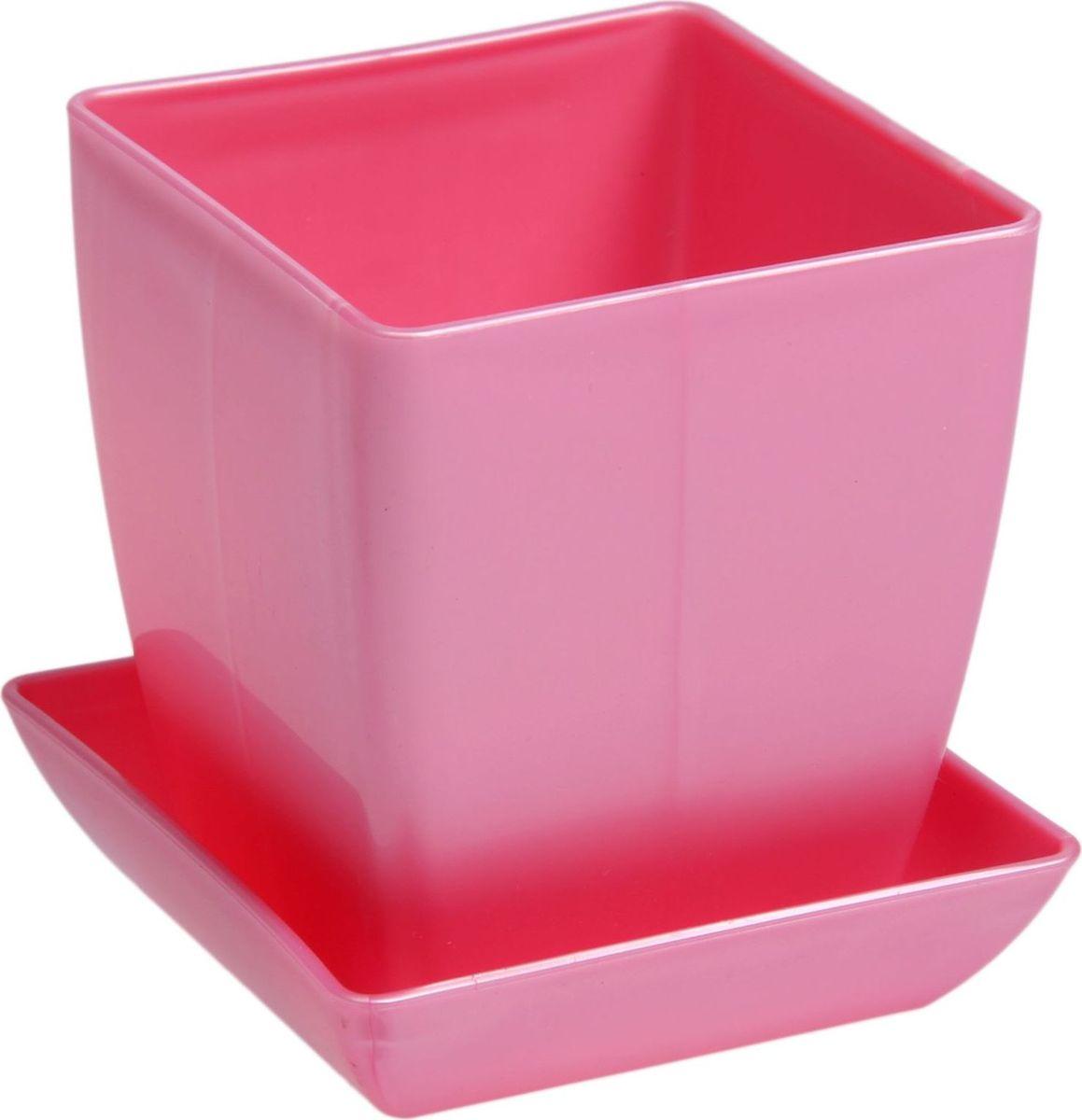Горшок для цветов Квадрат, с поддоном, цвет: розовый, 0,3 л1459530Любой, даже самый современный и продуманный интерьер будет незавершенным без растений. Они не только очищают воздух и насыщают его кислородом, но и украшают окружающее пространство. Такому полезному члену семьи просто необходим красивый и функциональный дом! Оптимальный выбор материала - пластмасса! Почему мы так считаем?- Малый вес. С легкостью переносите горшки и кашпо с места на место, ставьте их на столики или полки, не беспокоясь о нагрузке.- Простота ухода. Кашпо не нуждается в специальных условиях хранения. Его легко чистить - достаточно просто сполоснуть теплой водой.- Никаких потертостей. Такие кашпо не царапают и не загрязняют поверхности, на которых стоят.- Пластик дольше хранит влагу, а значит, растение реже нуждается в поливе. Пластмасса не пропускает воздух - корневой системе растения не грозят резкие перепады температур.- Огромный выбор форм, декора и расцветок - вы без труда найдете что-то, что идеально впишется в уже существующий интерьер.Соблюдая нехитрые правила ухода, вы можете заметно продлить срок службы горшков и кашпо из пластика: всегда учитывайте размер кроны и корневой системы (при разрастании большое растение способно повредить маленький горшок) берегите изделие от воздействия прямых солнечных лучей, чтобы горшки не выцветали держите кашпо из пластика подальше от нагревающихся поверхностей. Создавайте прекрасные цветочные композиции, выращивайте рассаду или необычные растения.