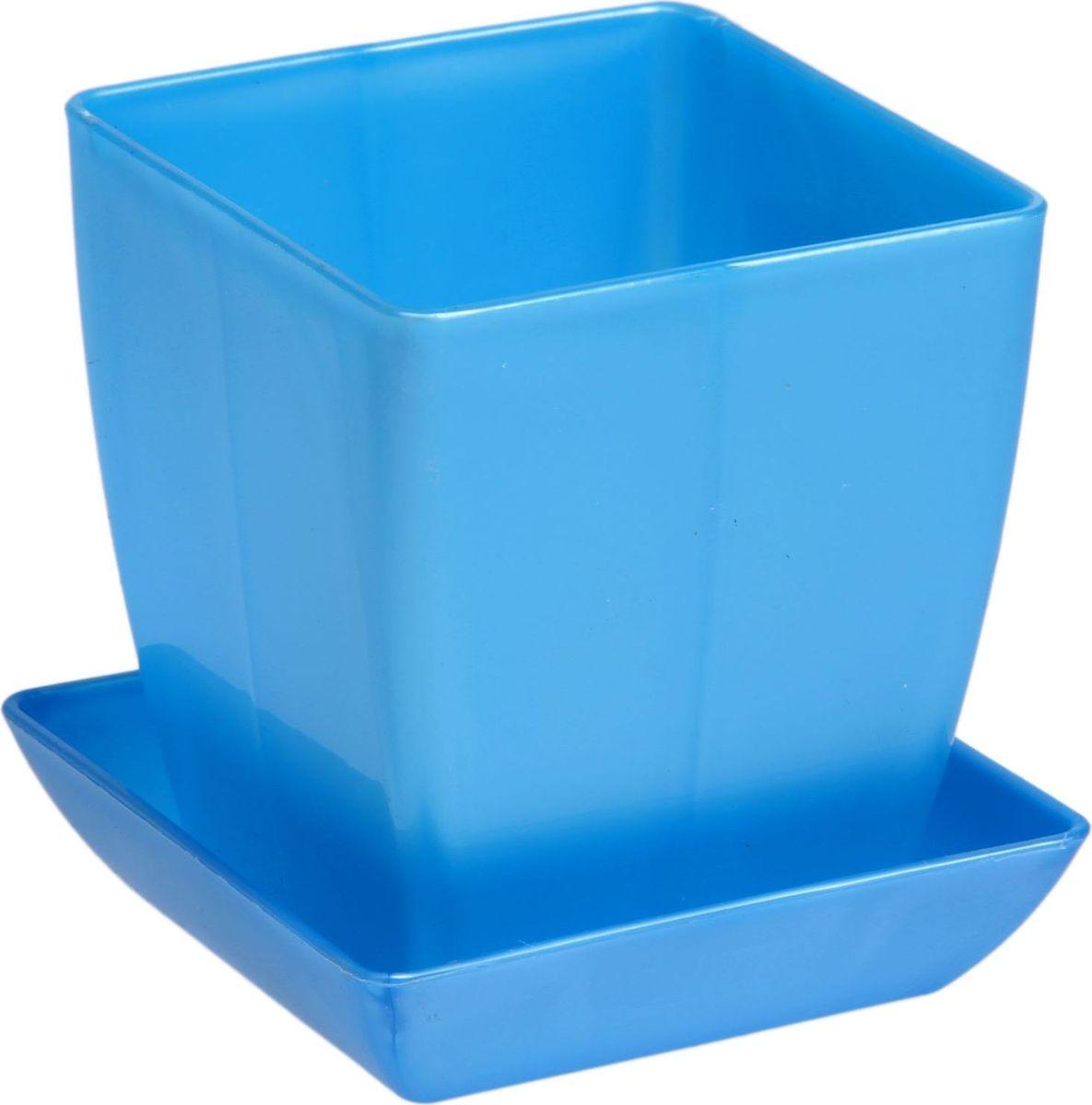 Горшок для цветов Квадрат, с поддоном, цвет: голубой, 3,5 л1459539Любой, даже самый современный и продуманный интерьер будет незавершённым без растений. Они не только очищают воздух и насыщают его кислородом, но и украшают окружающее пространство. Такому полезному члену семьи просто необходим красивый и функциональный дом! Мы предлагаем #name#! Оптимальный выбор материала — пластмасса! Почему мы так считаем?Малый вес. С лёгкостью переносите горшки и кашпо с места на место, ставьте их на столики или полки, не беспокоясь о нагрузке. Простота ухода. Кашпо не нуждается в специальных условиях хранения. Его легко чистить — достаточно просто сполоснуть тёплой водой. Никаких потёртостей. Такие кашпо не царапают и не загрязняют поверхности, на которых стоят. Пластик дольше хранит влагу, а значит, растение реже нуждается в поливе. Пластмасса не пропускает воздух — корневой системе растения не грозят резкие перепады температур. Огромный выбор форм, декора и расцветок — вы без труда найдёте что-то, что идеально впишется в уже существующий интерьер. Соблюдая нехитрые правила ухода, вы можете заметно продлить срок службы горшков и кашпо из пластика:всегда учитывайте размер кроны и корневой системы (при разрастании большое растение способно повредить маленький горшок)берегите изделие от воздействия прямых солнечных лучей, чтобы горшки не выцветалидержите кашпо из пластика подальше от нагревающихся поверхностей. Создавайте прекрасные цветочные композиции, выращивайте рассаду или необычные растения.