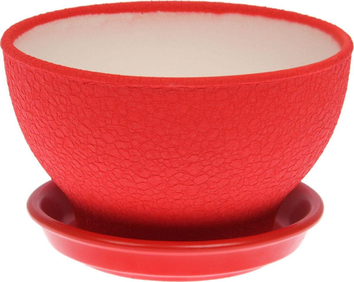 Кашпо Керамика ручной работы, для бонсая, цвет: красный, 1 л1489653Комнатные растения — всеобщие любимцы. Они радуют глаз, насыщают помещение кислородом и украшают пространство. Каждому из них необходим свой удобный и красивый дом. Кашпо из керамики прекрасно подходят для высадки растений: за счёт пластичности глины и разных способов обработки существует великое множество форм и дизайновпористый материал позволяет испаряться лишней влагевоздух, необходимый для дыхания корней, проникает сквозь керамические стенки! #name# позаботится о зелёном питомце, освежит интерьер и подчеркнёт его стиль.