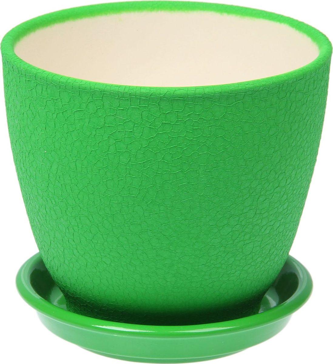 Кашпо Керамика ручной работы Кедр, цвет: зеленый, 2,2 л1489695Комнатные растения - всеобщие любимцы. Они радуют глаз, насыщают помещение кислородом и украшают пространство. Каждому из них необходим свой удобный и красивый дом. Кашпо из керамики прекрасно подходят для высадки растений:пористый материал позволяет испаряться лишней влаге;воздух, необходимый для дыхания корней, проникает сквозь керамические стенки. Кашпо Кедр позаботится о зеленом питомце, освежит интерьер и подчеркнет его стиль.