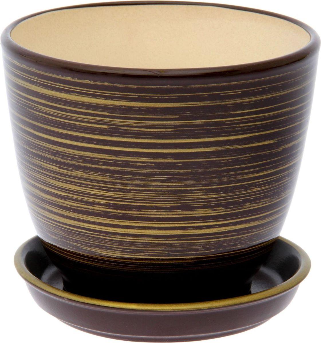 Кашпо Керамика ручной работы Кедр. Глянец, цвет: шоколадный, золотой, 1,6 л1489701Комнатные растения — всеобщие любимцы. Они радуют глаз, насыщают помещение кислородом и украшают пространство. Каждому из них необходим свой удобный и красивый дом. Кашпо из керамики прекрасно подходят для высадки растений: за счёт пластичности глины и разных способов обработки существует великое множество форм и дизайновпористый материал позволяет испаряться лишней влагевоздух, необходимый для дыхания корней, проникает сквозь керамические стенки! #name# позаботится о зелёном питомце, освежит интерьер и подчеркнёт его стиль.