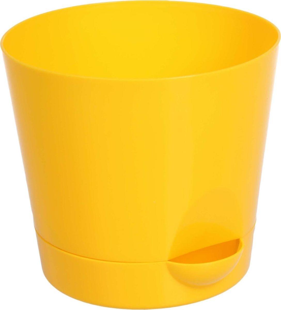 Кашпо Idea Ника, с прикорневым поливом, с поддоном, цвет: желтый, 1,6 л1623166Кашпо Idea Ника изготовлено из высококачественного полипропилена (пластика). В комплект входит поддон со специальной выемкой, благодаря которому имеется возможность прикорневого полива. Изделие подходит для выращивания растений и цветов в домашних условиях. Стильная яркая картинка сделает такое кашпо прекрасным дополнением интерьера. Объем горшка: 1,6 л. Диаметр горшка (по верхнему краю): 15 см. Высота горшка: 13,5 см. Диаметр подставки: 12,5 см.
