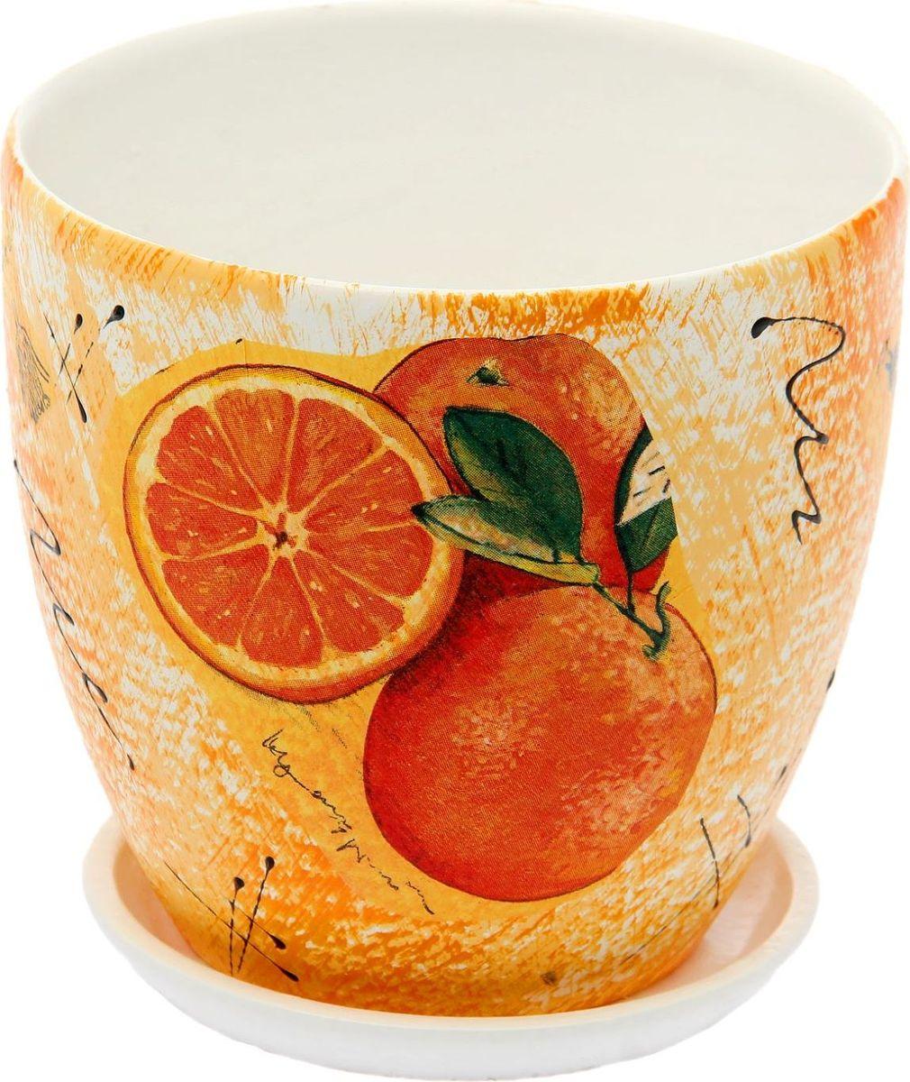 Кашпо Апельсин, 1,5 л1793184Комнатные растения — всеобщие любимцы. Они радуют глаз, насыщают помещение кислородом и украшают пространство. Каждому из них необходим свой удобный и красивый дом. Кашпо из керамики прекрасно подходят для высадки растений: за счет пластичности глины и разных способов обработки существует великое множество форм и дизайнов пористый материал позволяет испаряться лишней влаге воздух, необходимый для дыхания корней, проникает сквозь керамические стенки! позаботится о зеленом питомце, освежит интерьер и подчеркнет его стиль.