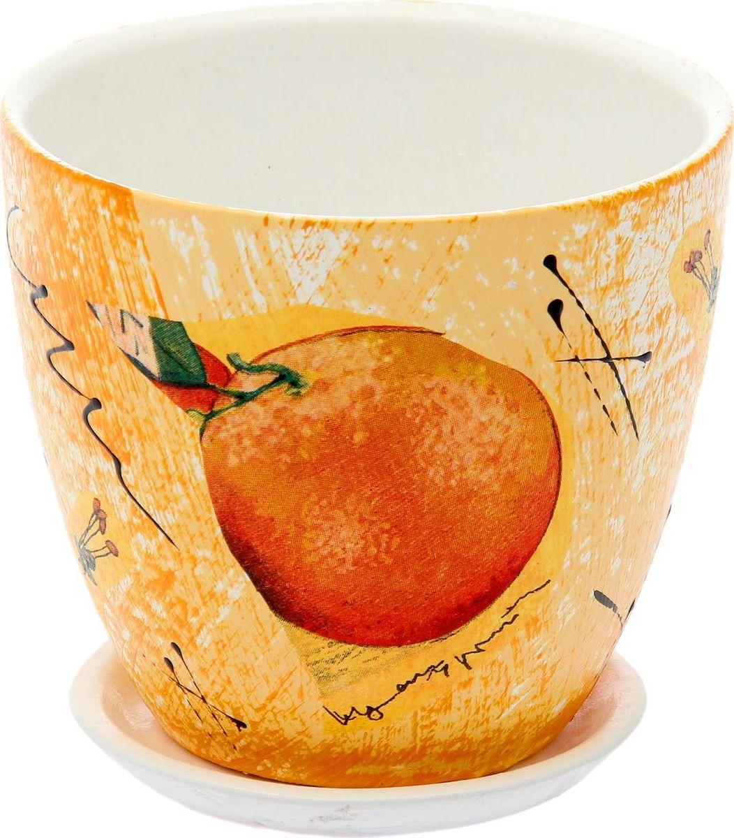 Кашпо Апельсин, 0,8 л1793185Комнатные растения — всеобщие любимцы. Они радуют глаз, насыщают помещение кислородом и украшают пространство. Каждому из них необходим свой удобный и красивый дом. Кашпо из керамики прекрасно подходят для высадки растений: за счет пластичности глины и разных способов обработки существует великое множество форм и дизайнов пористый материал позволяет испаряться лишней влаге воздух, необходимый для дыхания корней, проникает сквозь керамические стенки! позаботится о зеленом питомце, освежит интерьер и подчеркнет его стиль.